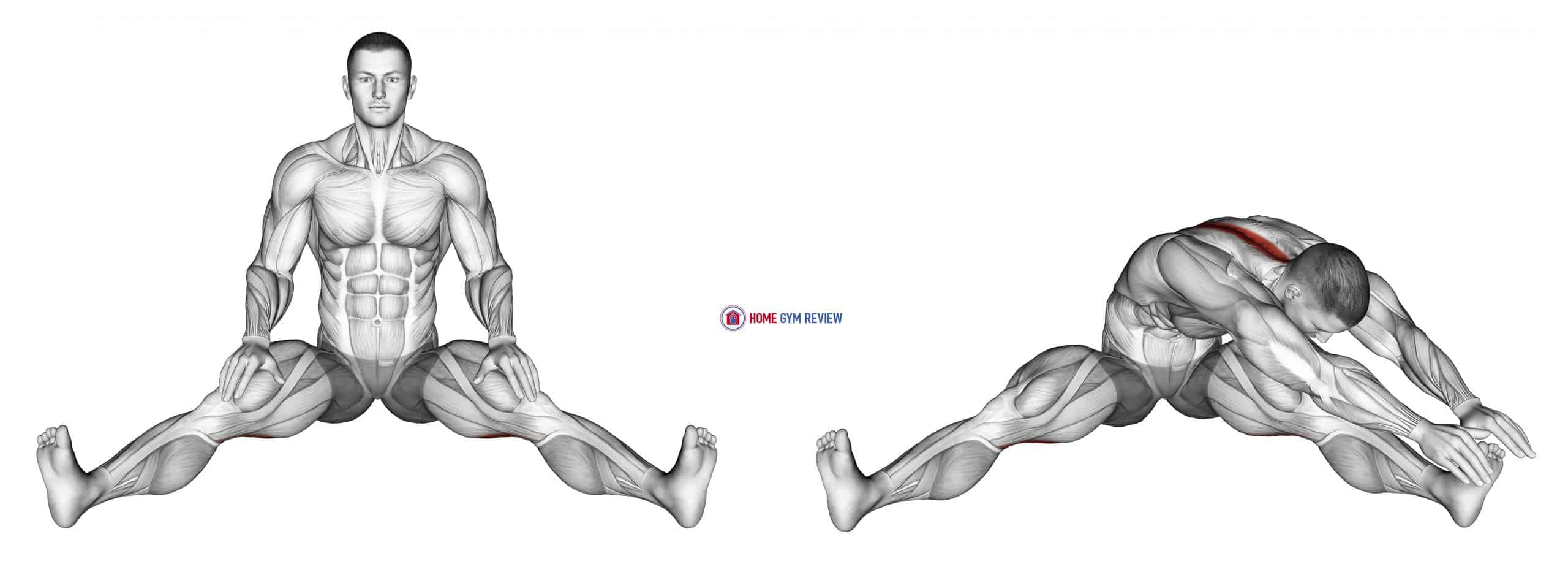 Seated Wide Angle Pose Sequence