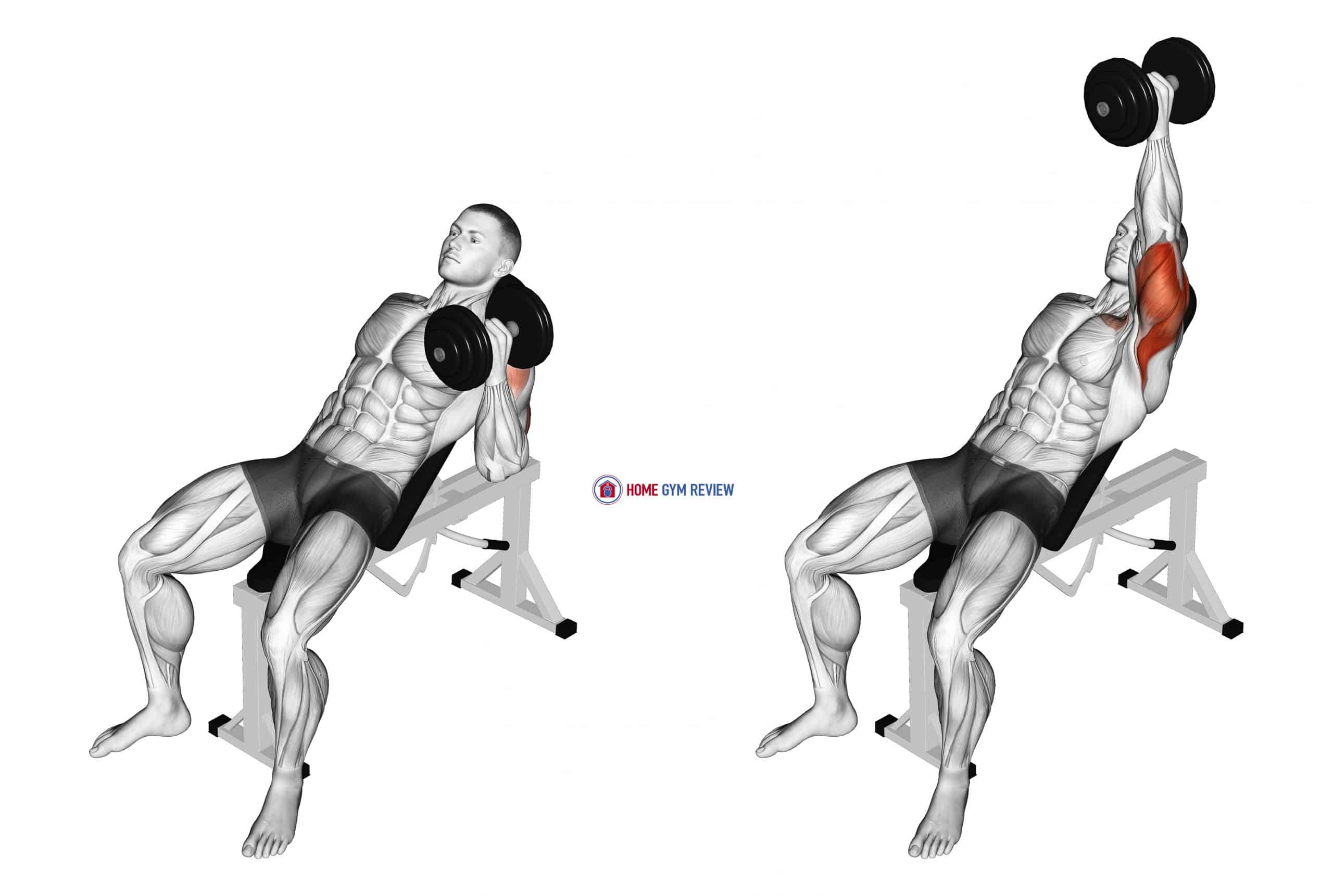 Dumbbell Incline One Arm Hammer Press