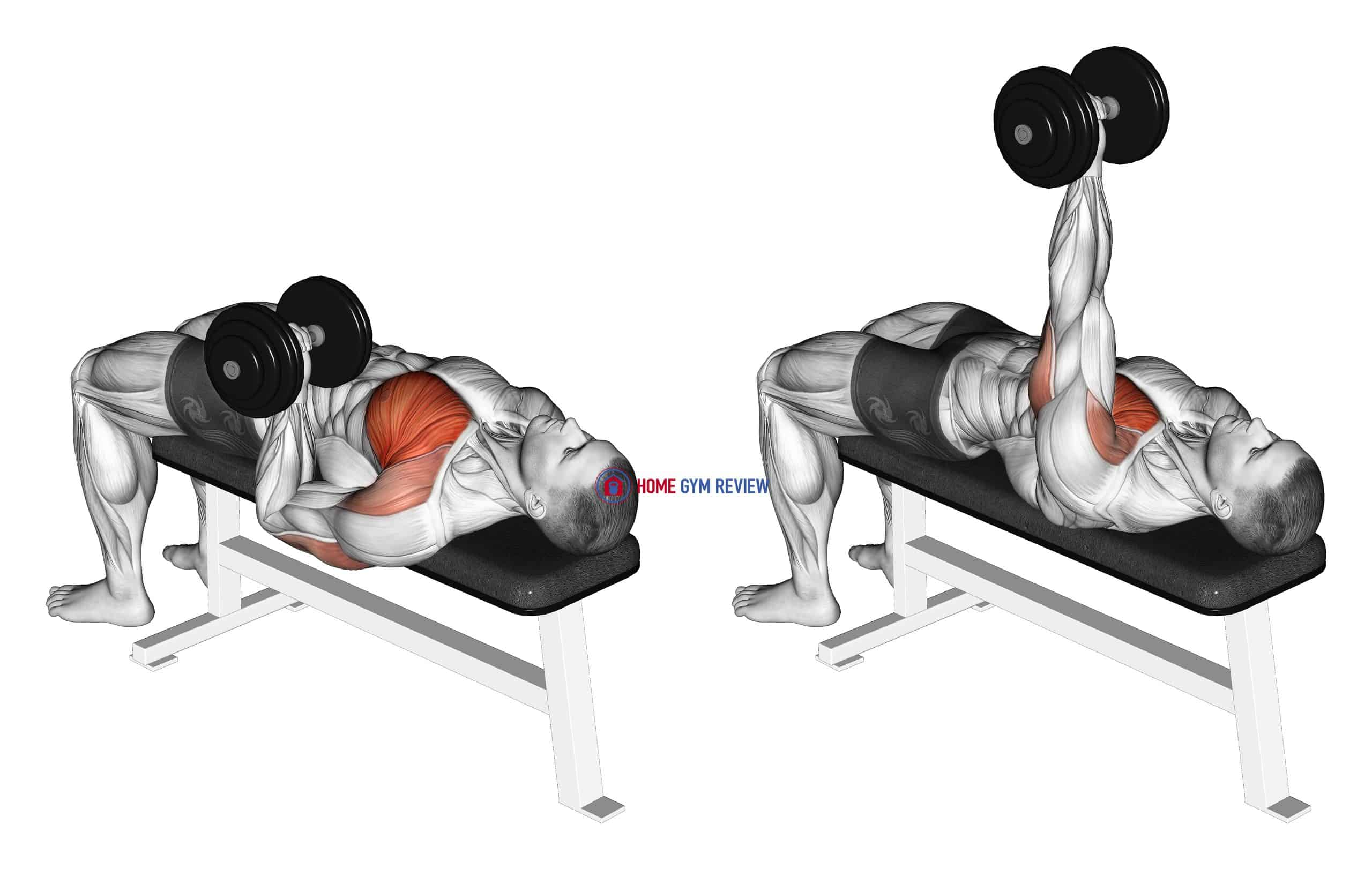 Dumbbell One Arm Reverse Grip Press