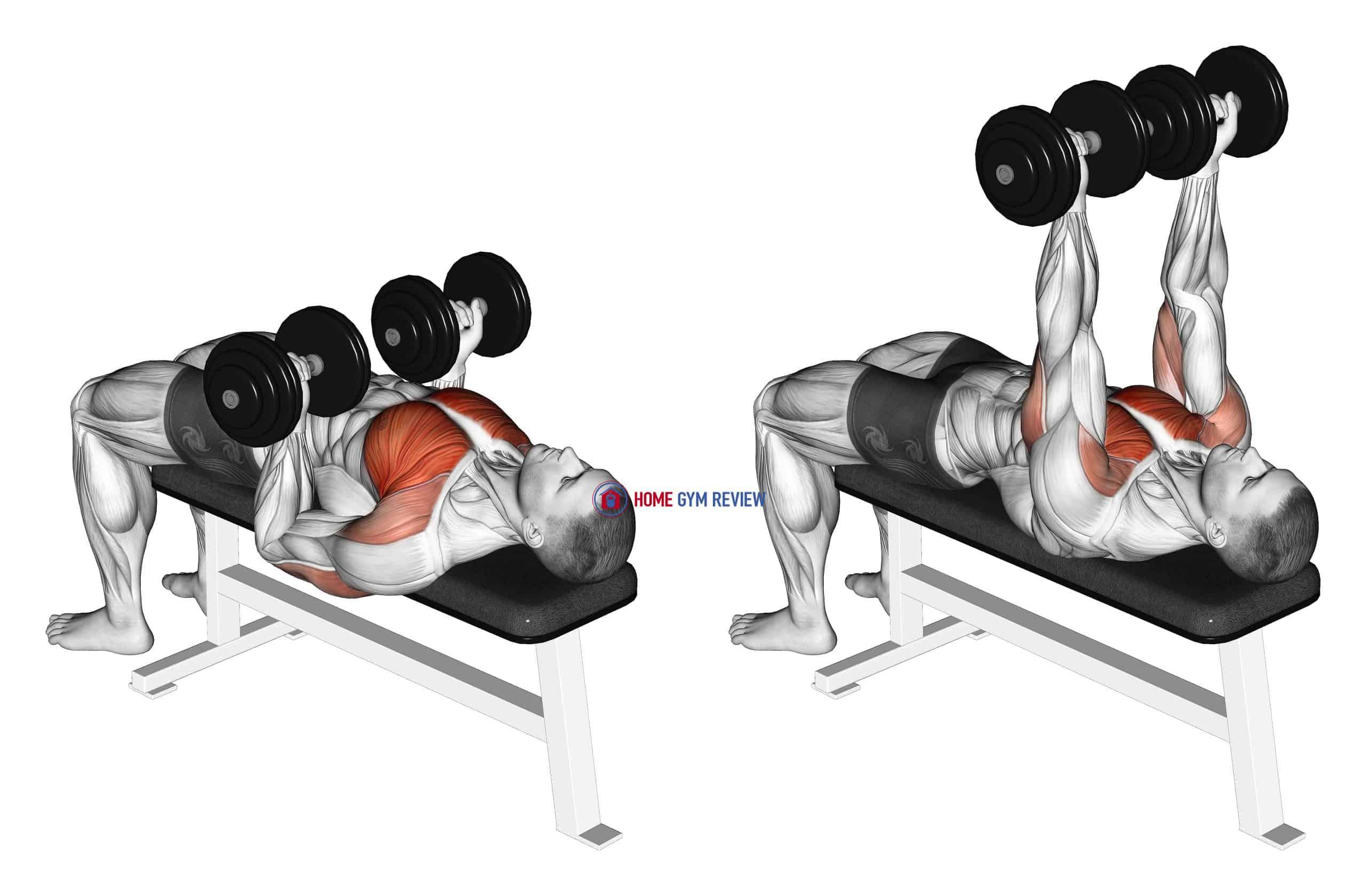 Dumbbell Reverse Bench Press