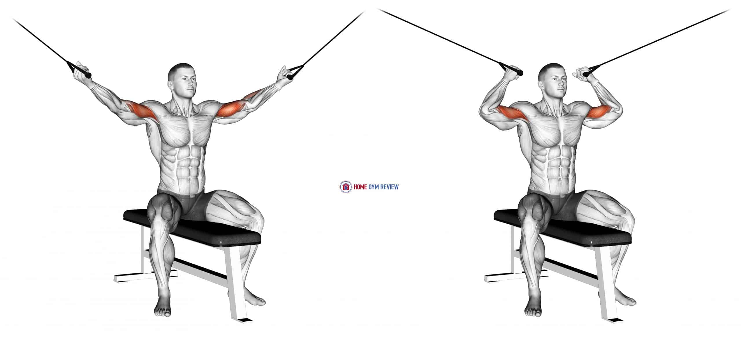 Cable Seated Overhead Curl