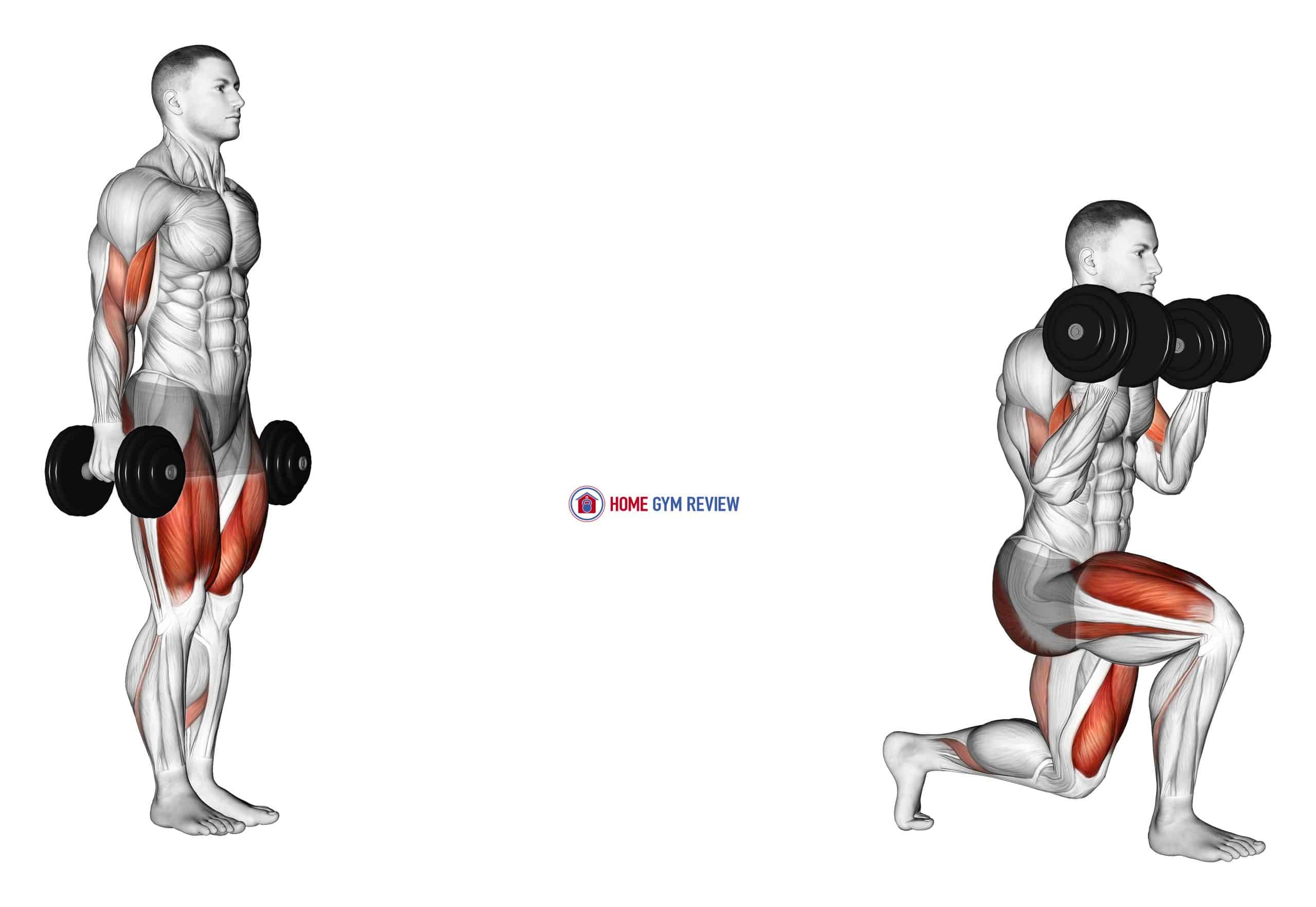 Dumbbell Lunge with Bicep Curl