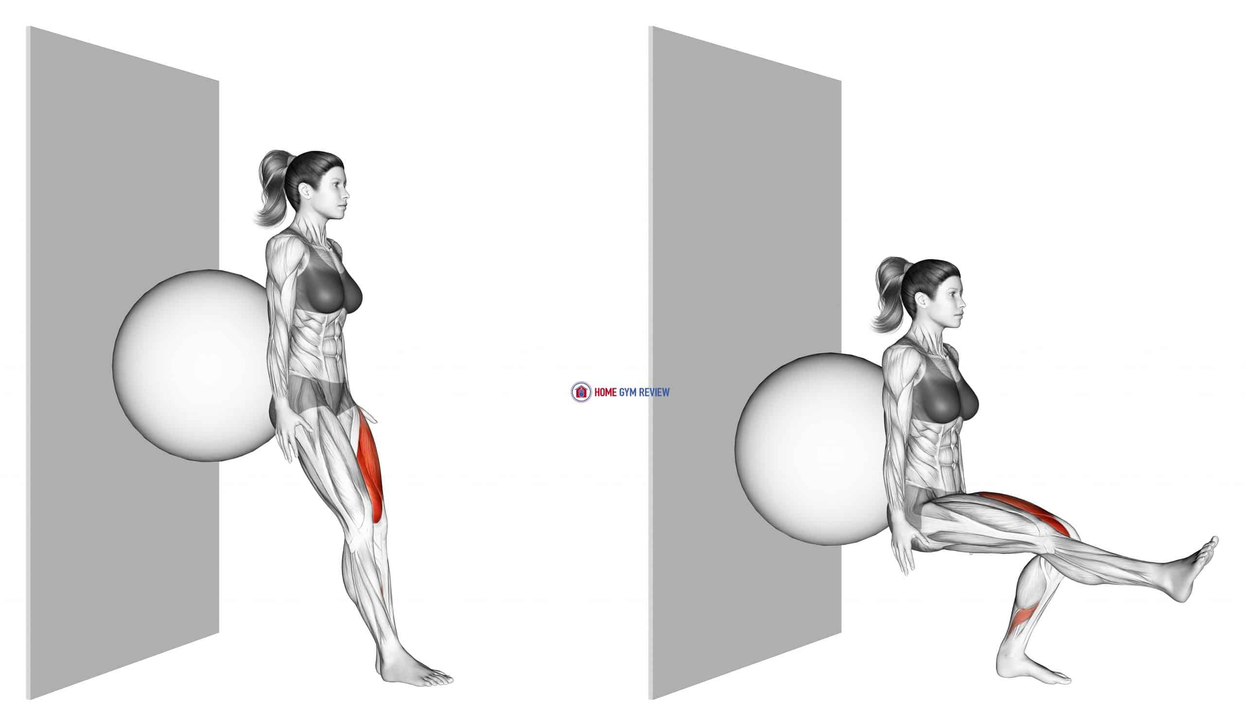 Stability Ball Single Leg Squat