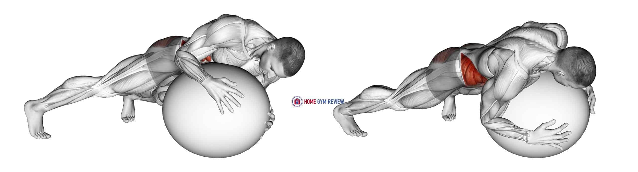 Prone Twist On Stability Ball