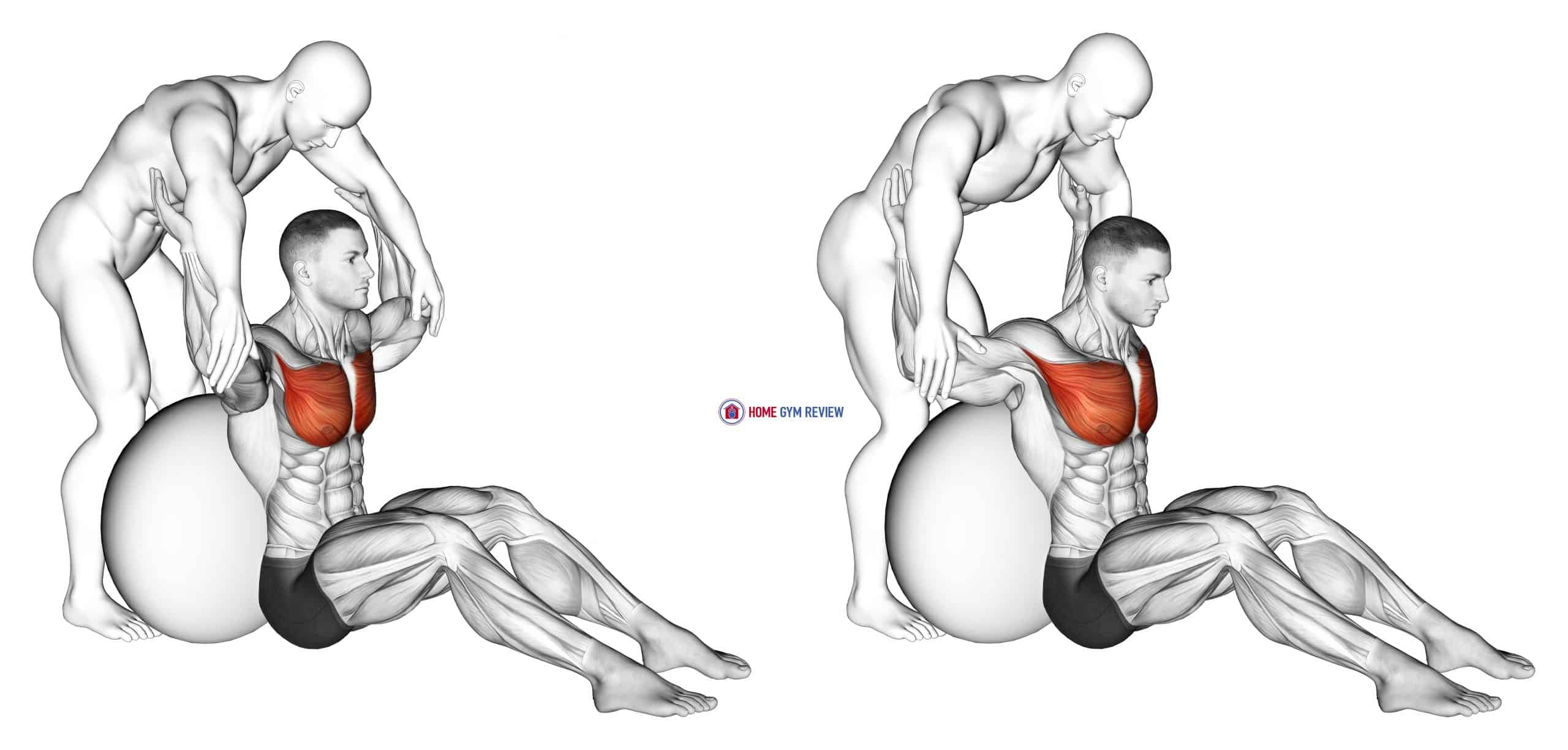 Assisted Seated Pectoralis Major Stretch With Stability Ball