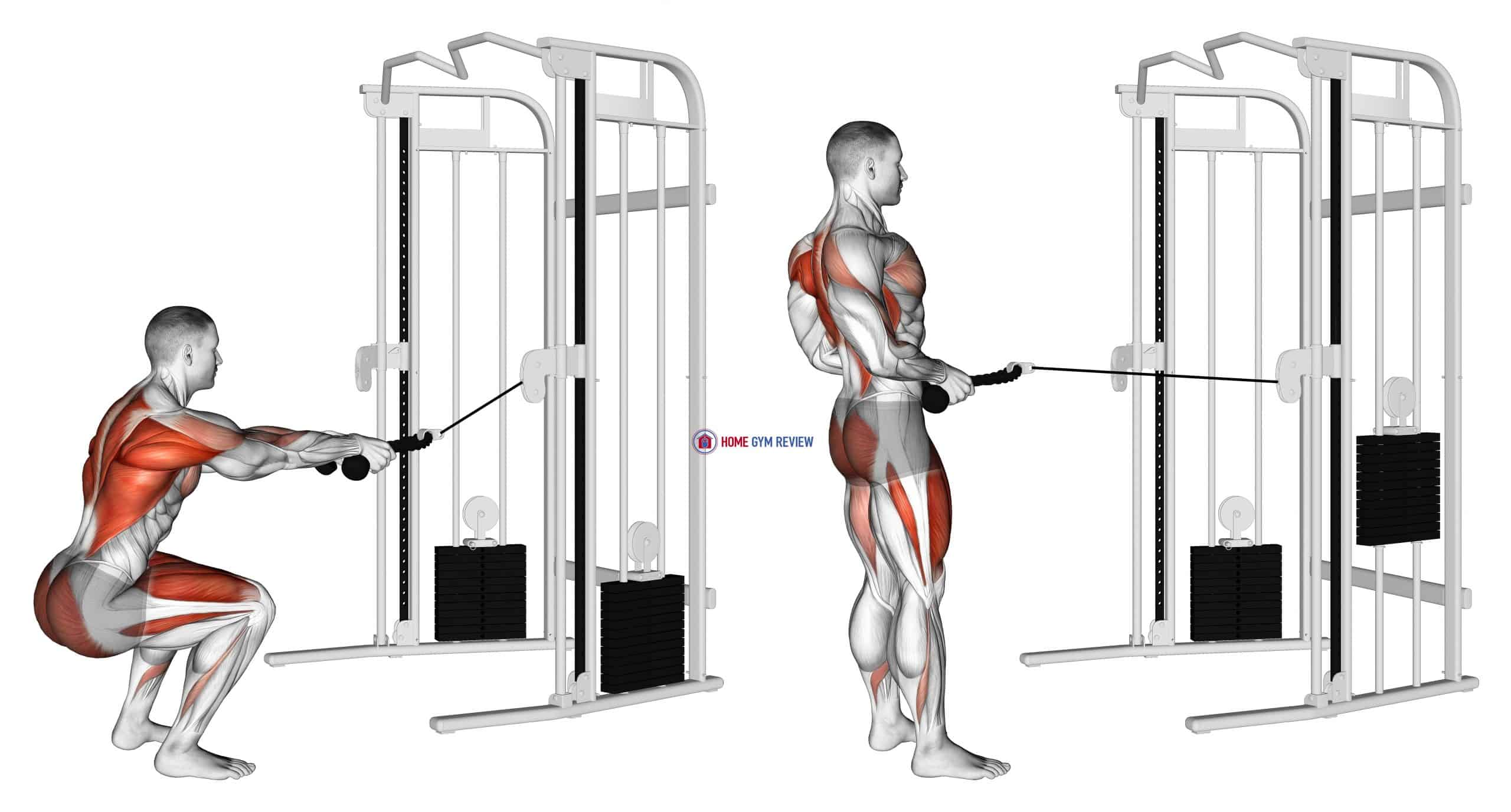 Cable Squat Row (with rope attachment)