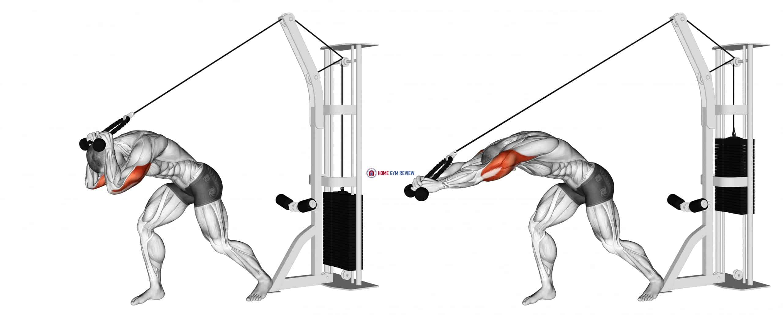 Cable Rope High Pulley Overhead Tricep Extension