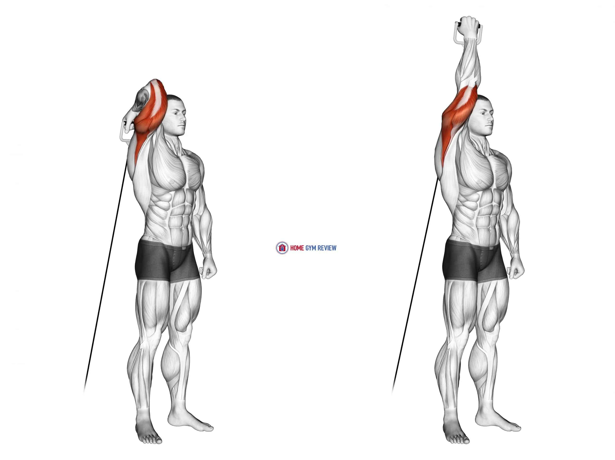 Cable Standing Reverse Grip One Arm Overhead Tricep Extension