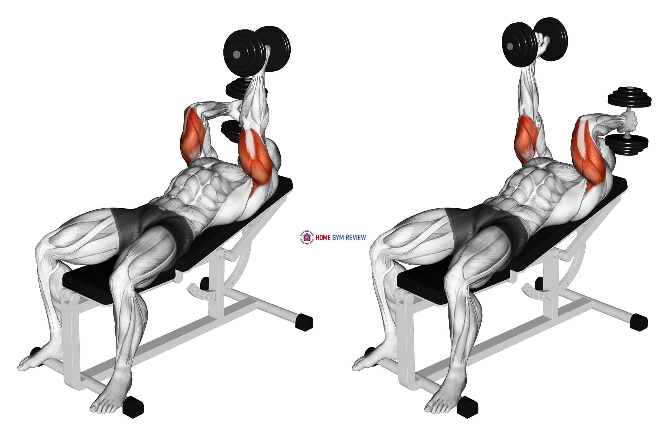 Dumbbell Lying Alternate Extension