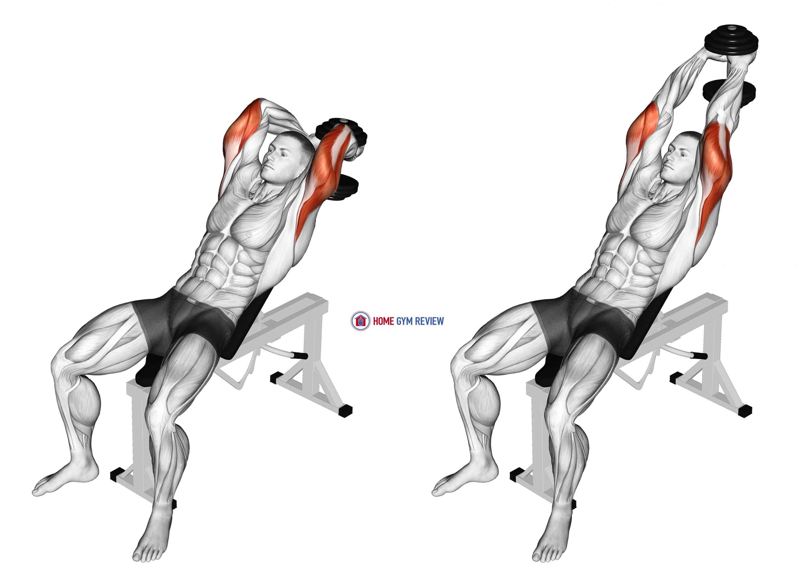 Dumbbell Incline Two Arm Extension