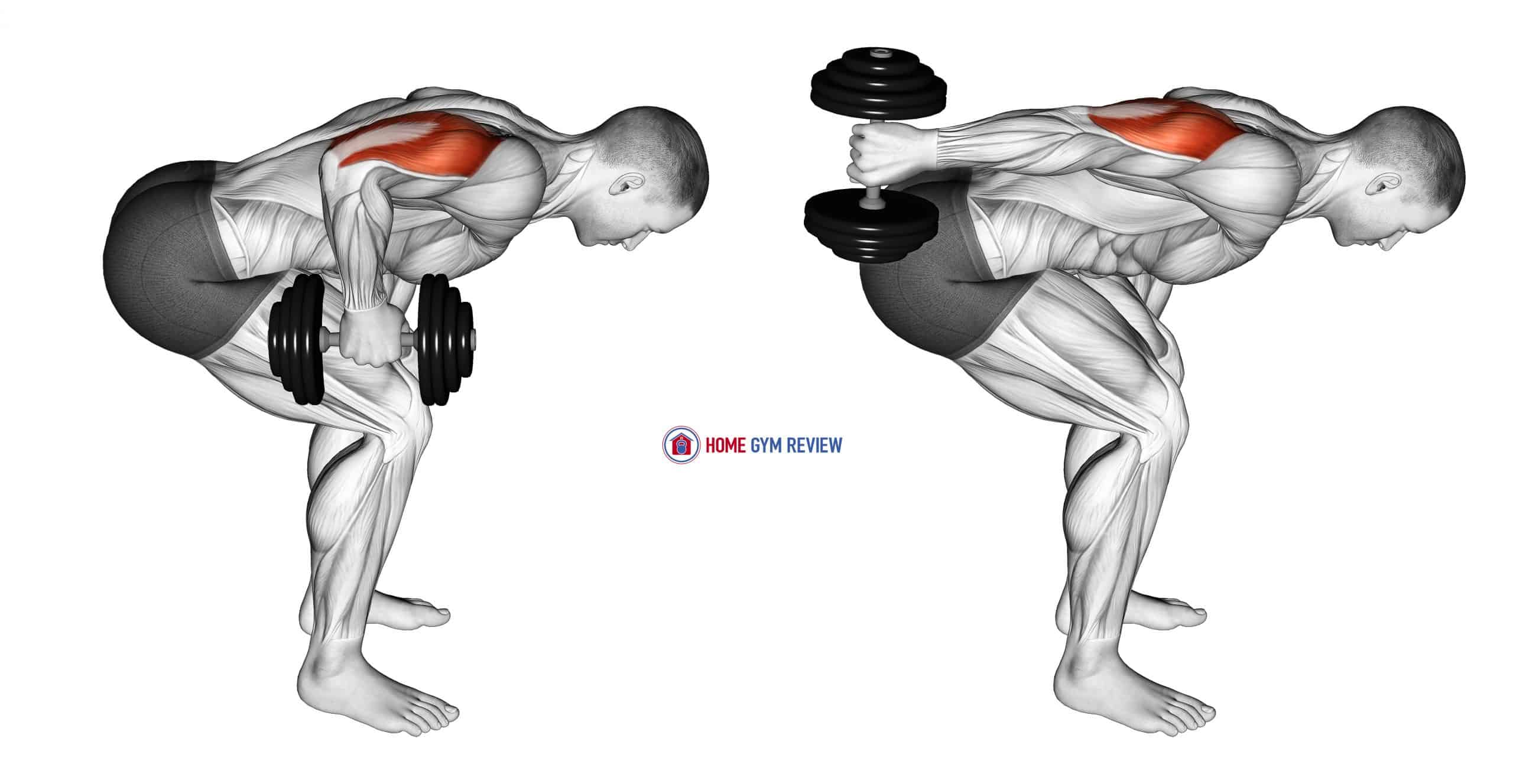 Dumbbell Standing Bent Over One Arm Triceps Extension