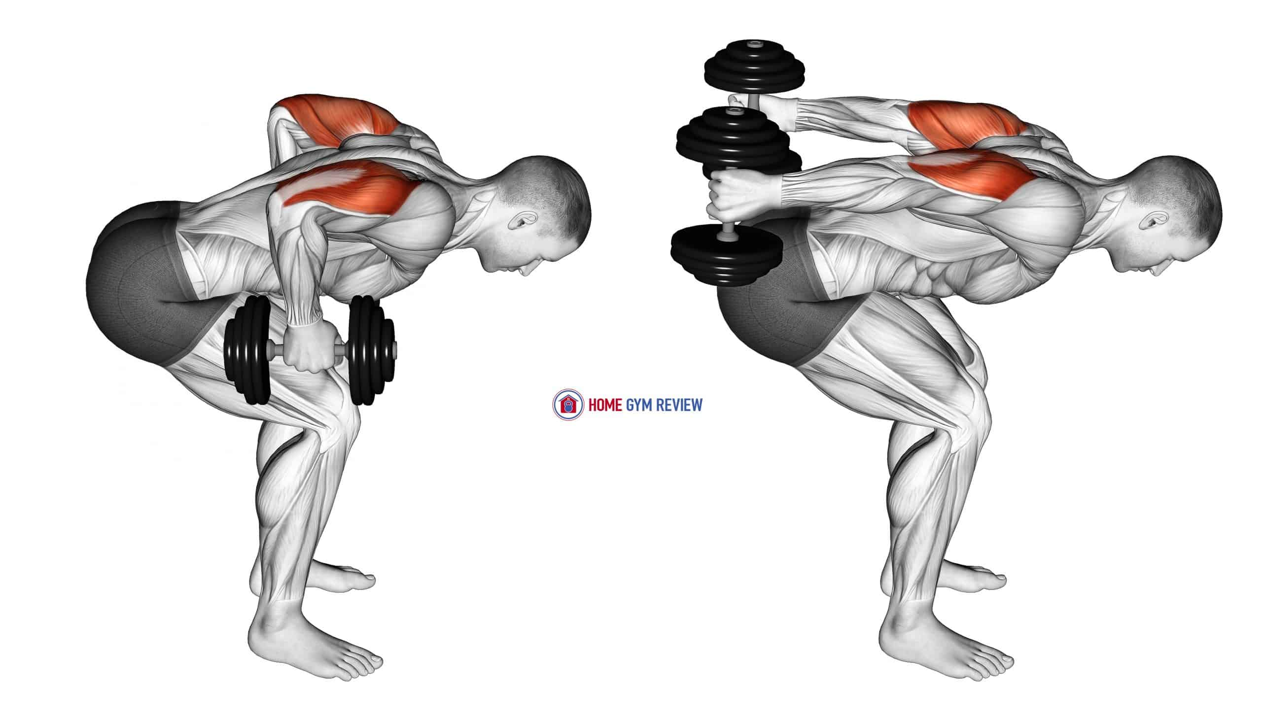 Dumbbell Standing Bent Over Two Arm Triceps Extension