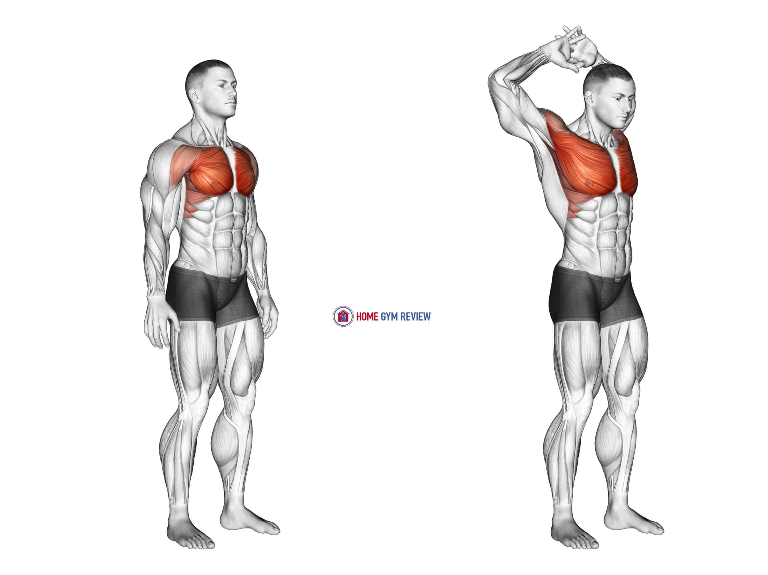 Above Head Chest Stretch