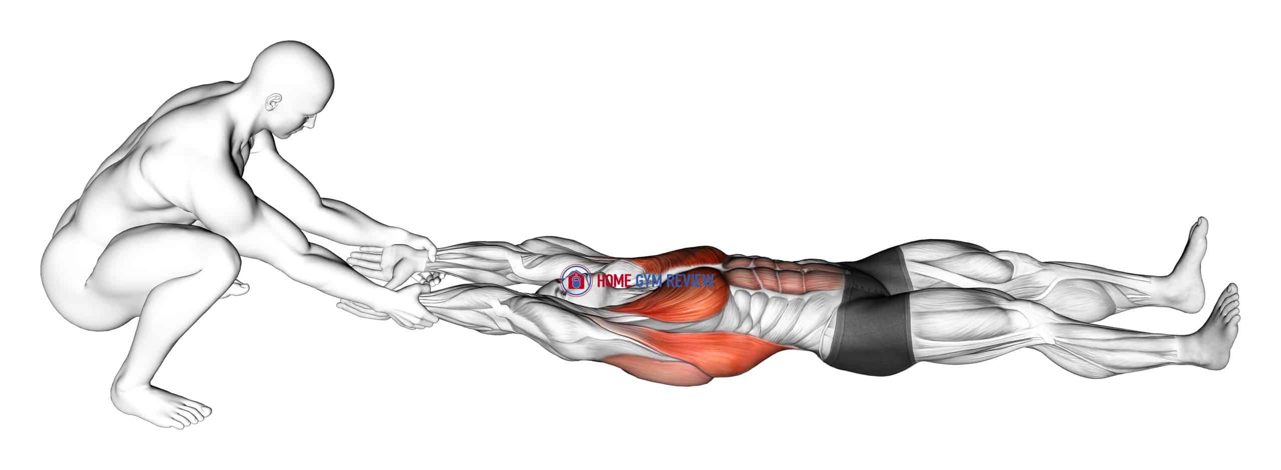 Assisted Straight Arms Lying Stretch