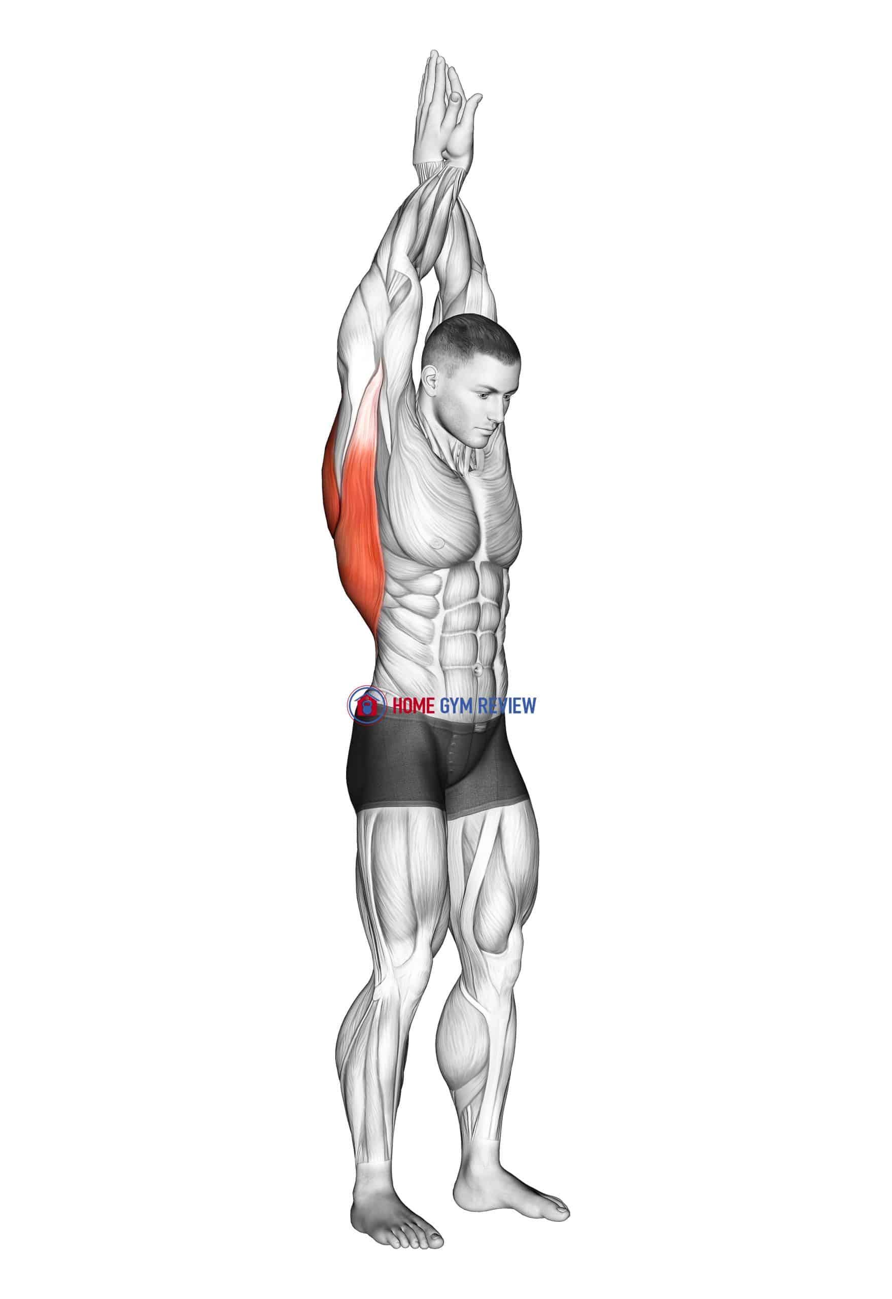 Reach up back stretch