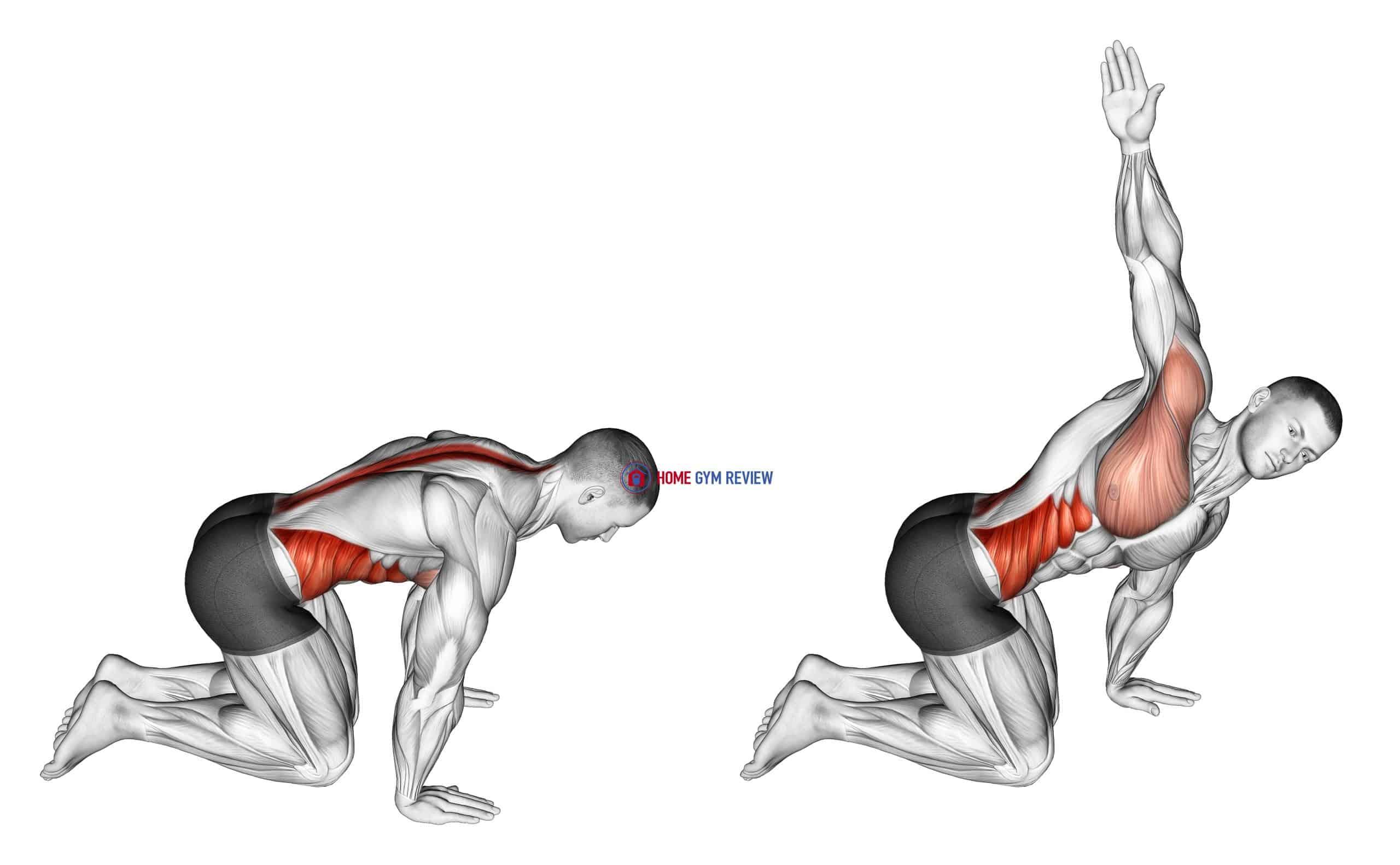 Kneeling Back Rotation Stretch