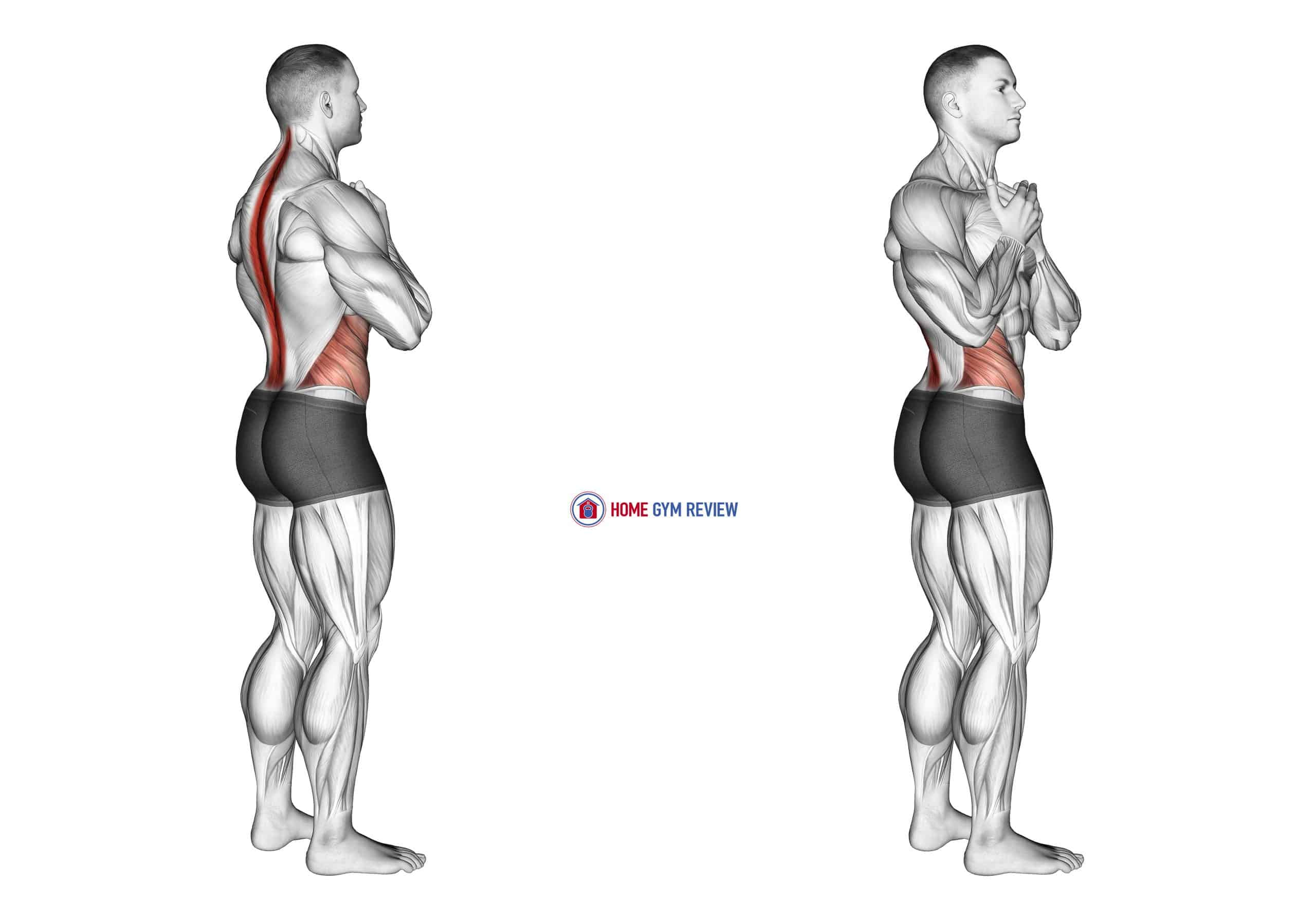 Standing Back Rotation Stretch