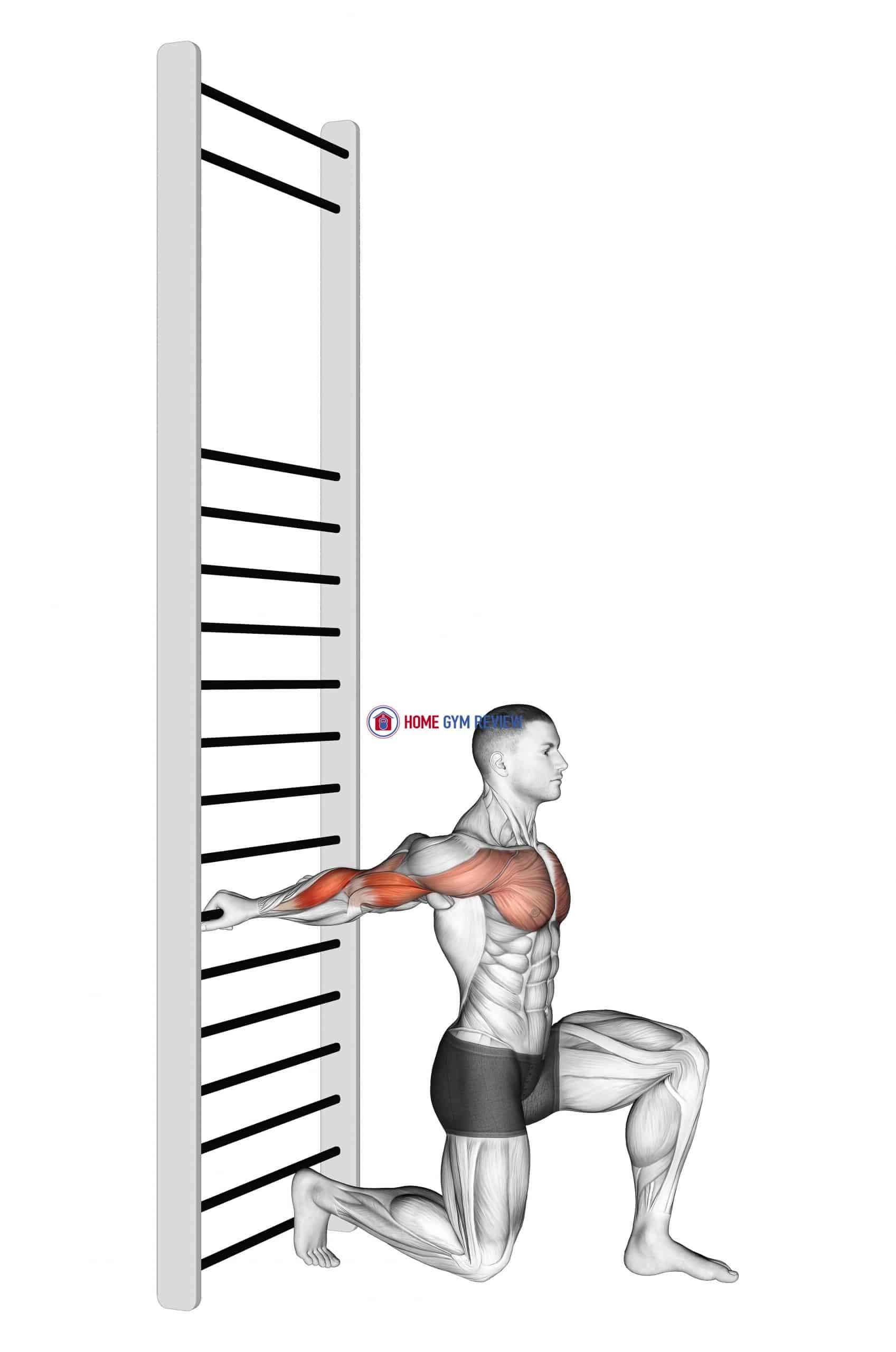 Arms Stretch On A Support
