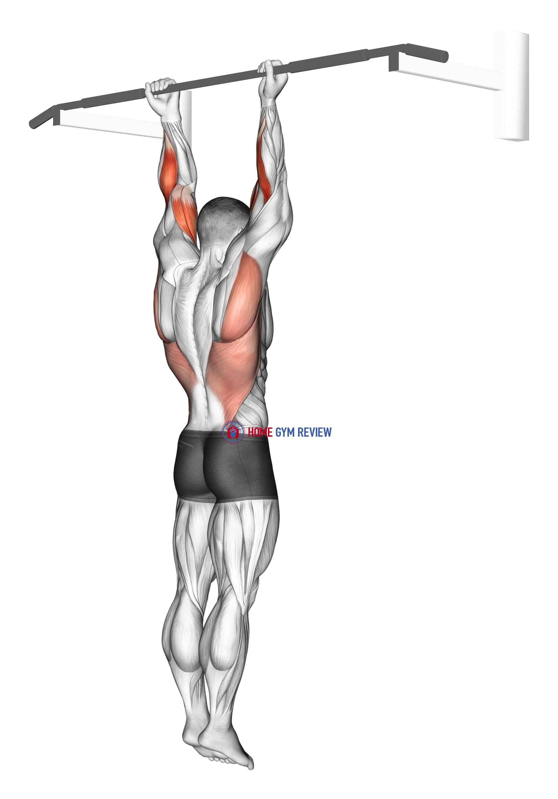 Supination Bar Suspension Stretch