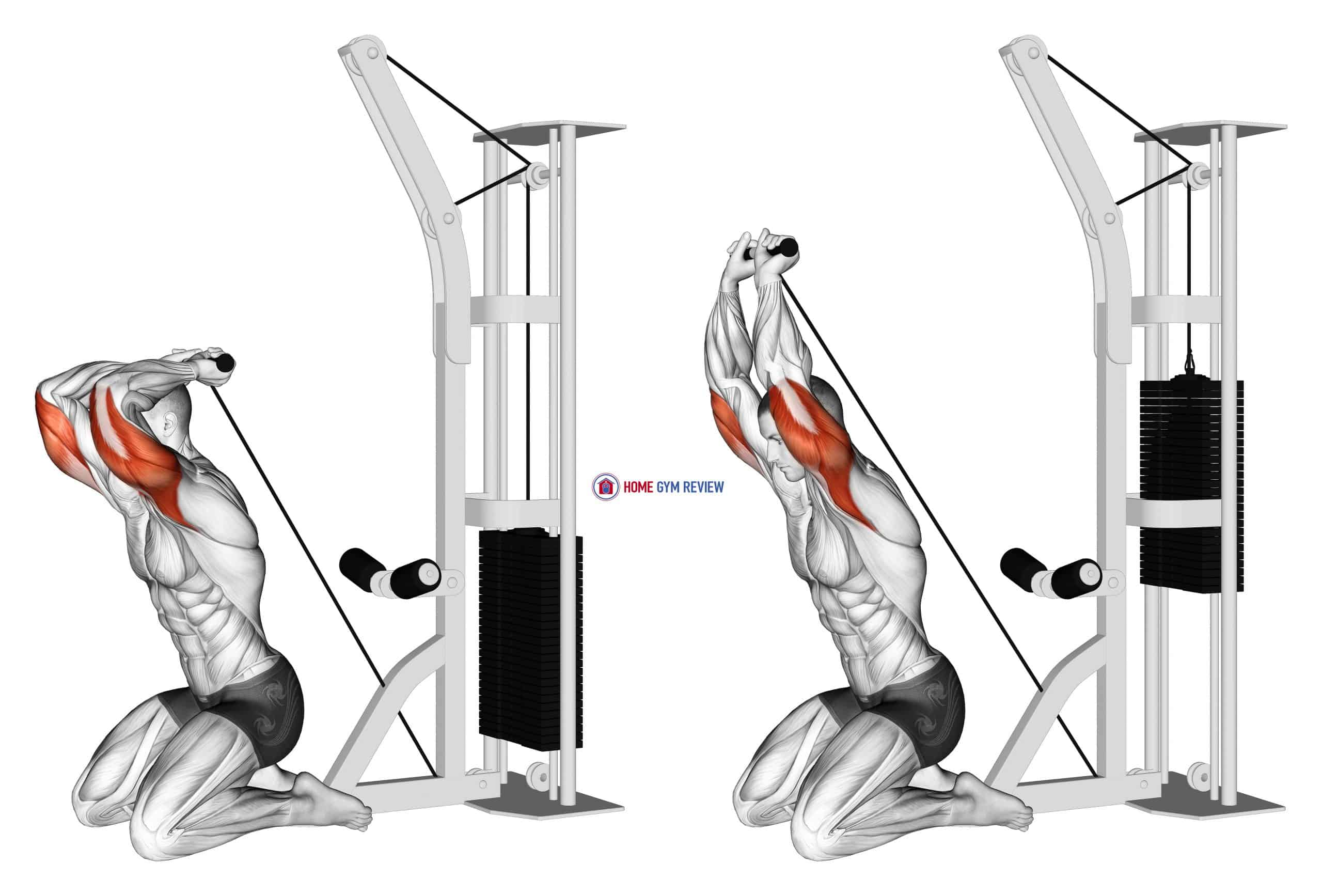 Cable Kneeling Triceps Extension (VERSION 2)