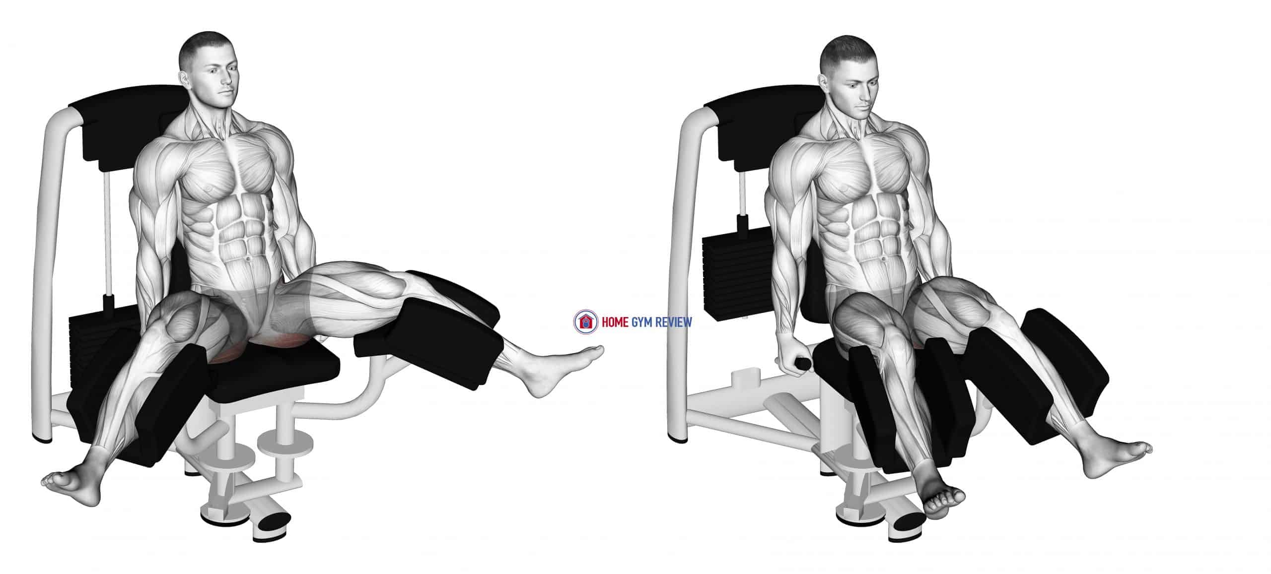 Lever Seated Hip Adduction (VERSION 2)