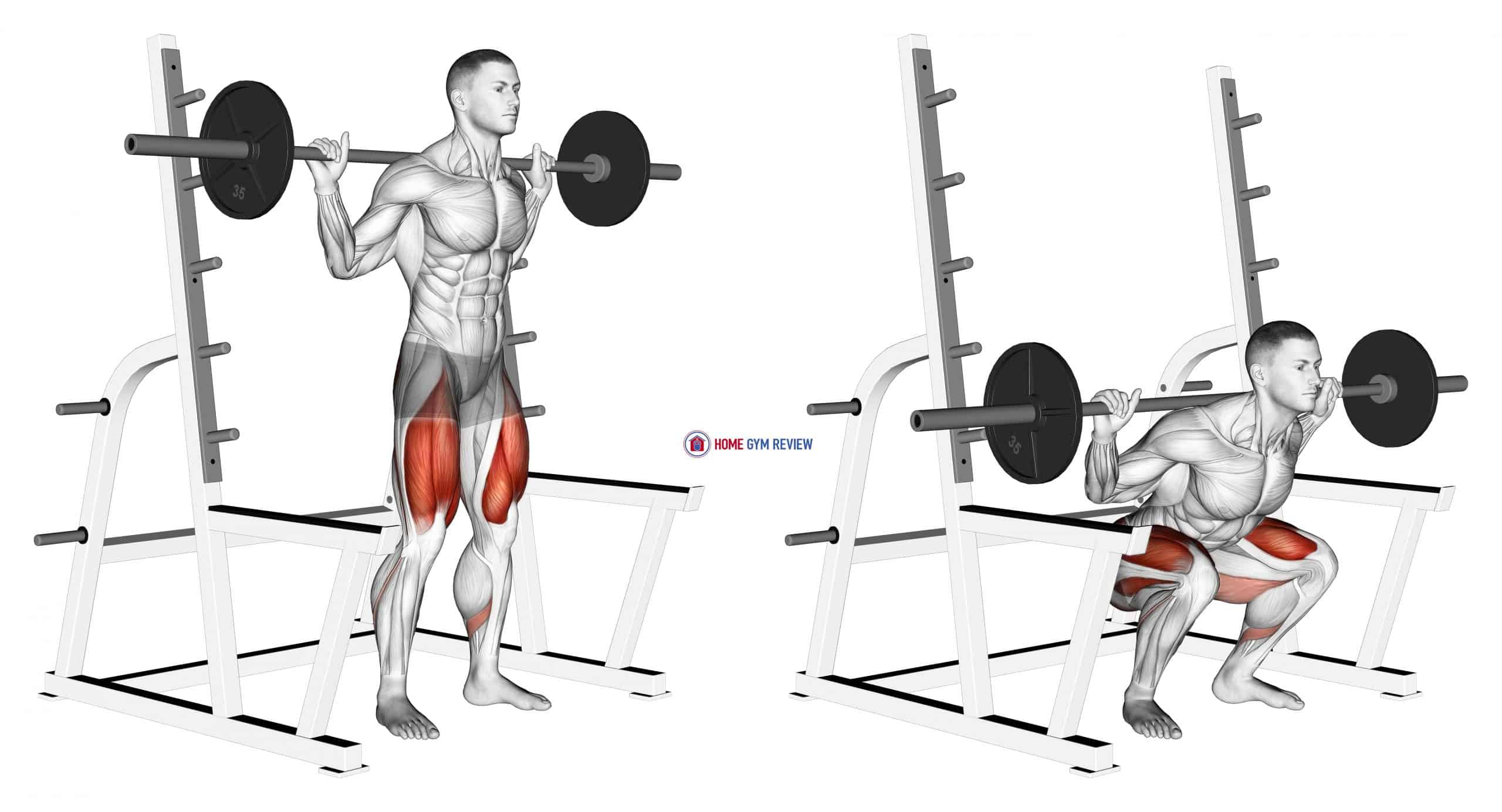 Barbell Low Bar Squat with Rack