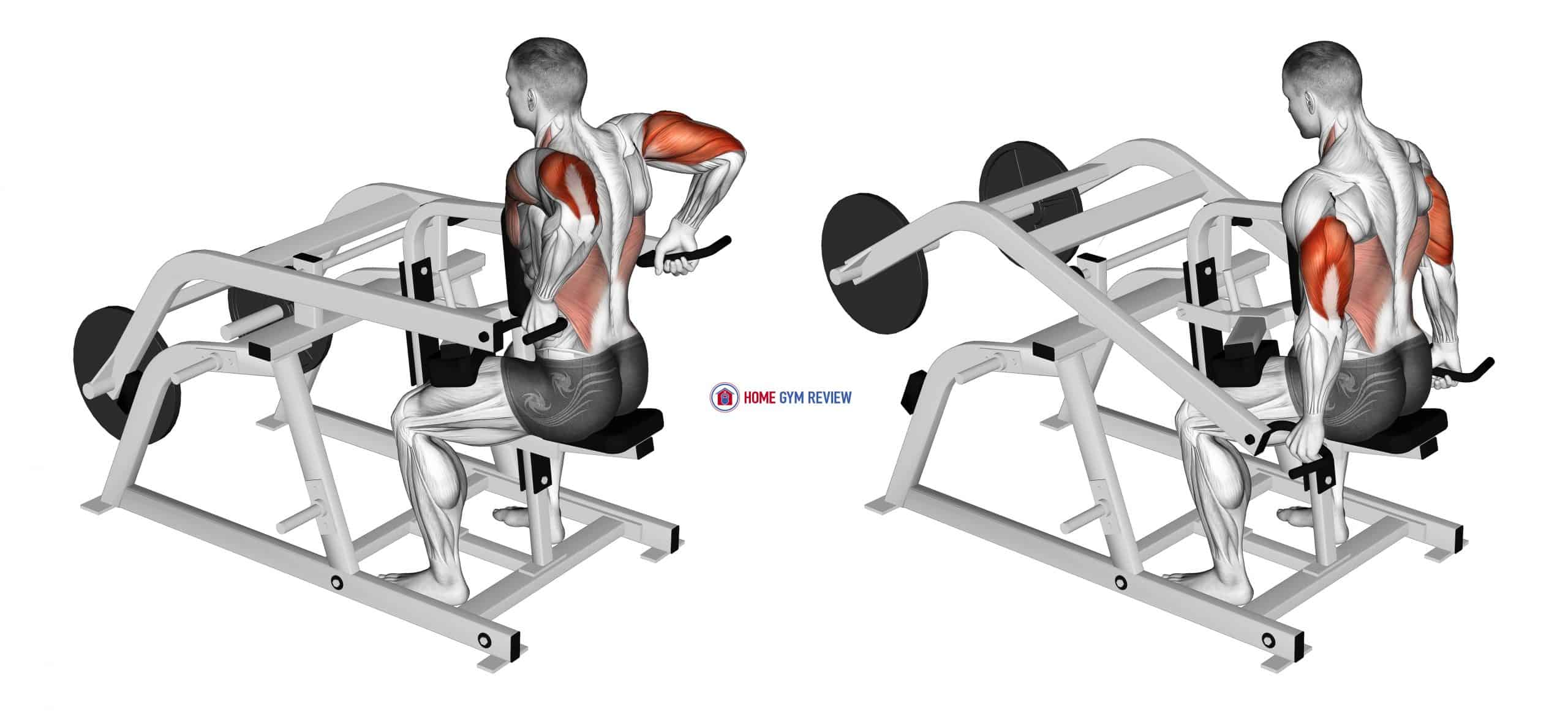 Lever Triceps Dip (plate loaded)