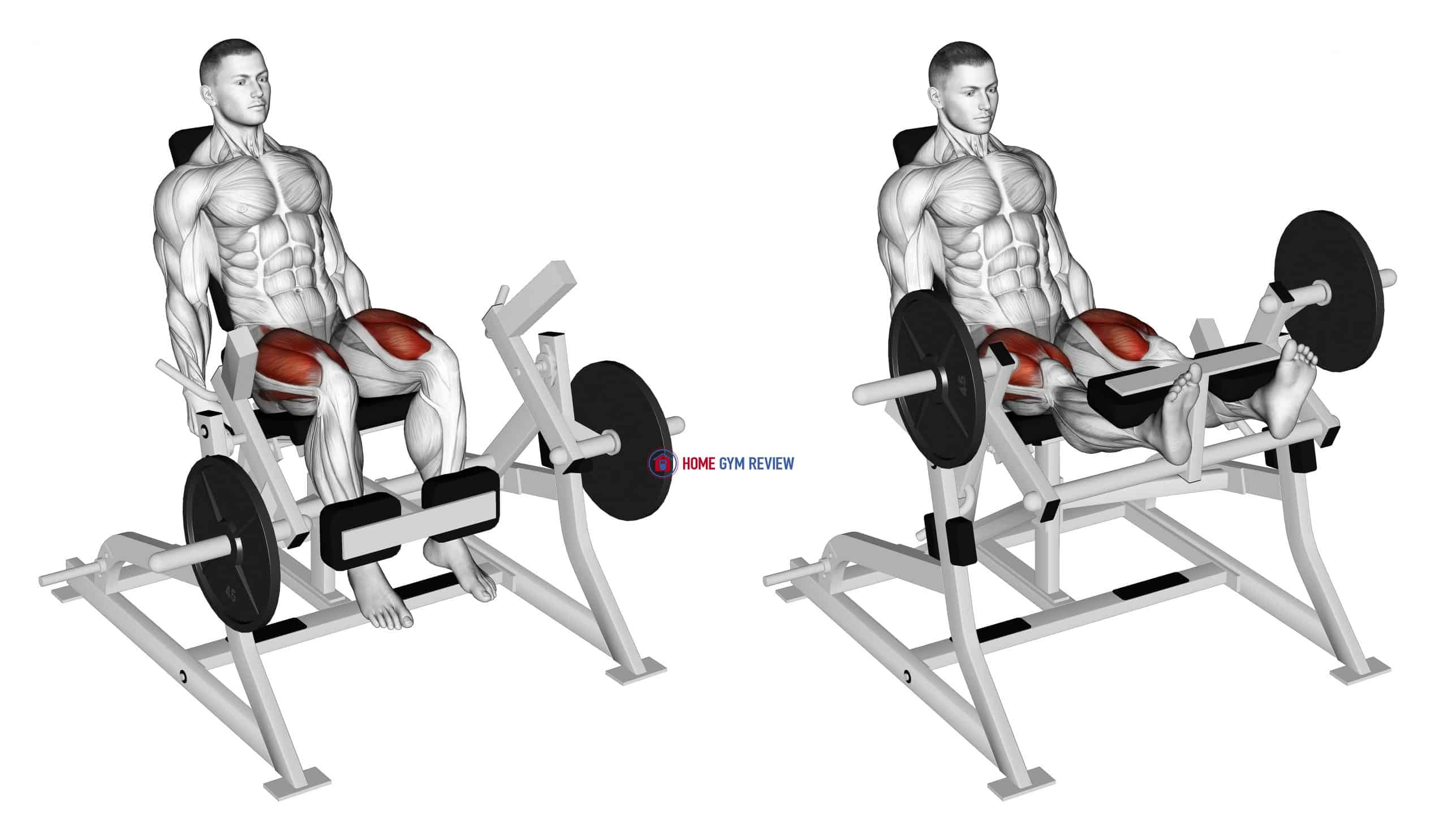 Lever Leg Extension (plate loaded)