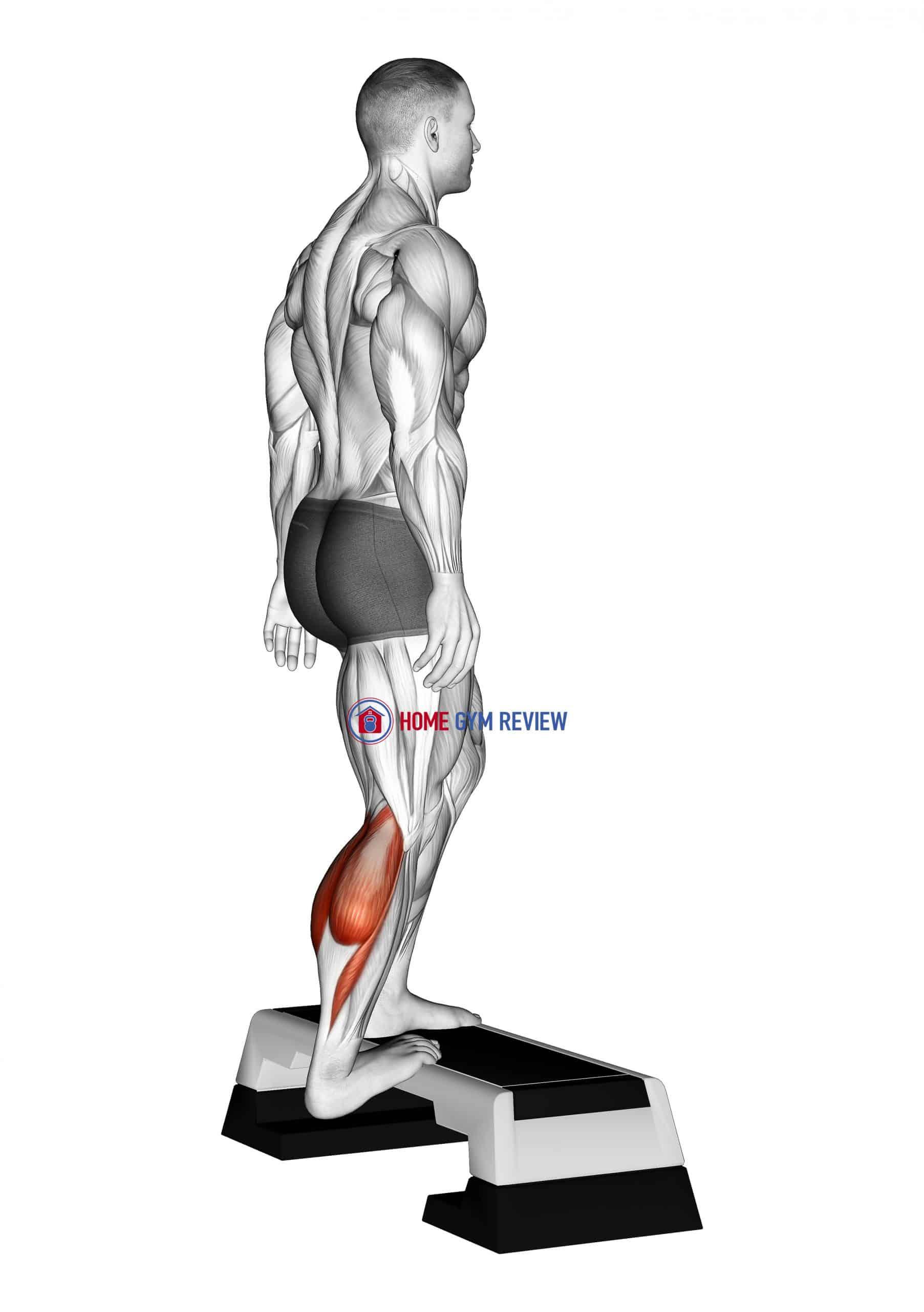 Single Heel Drop Achilles Stretch
