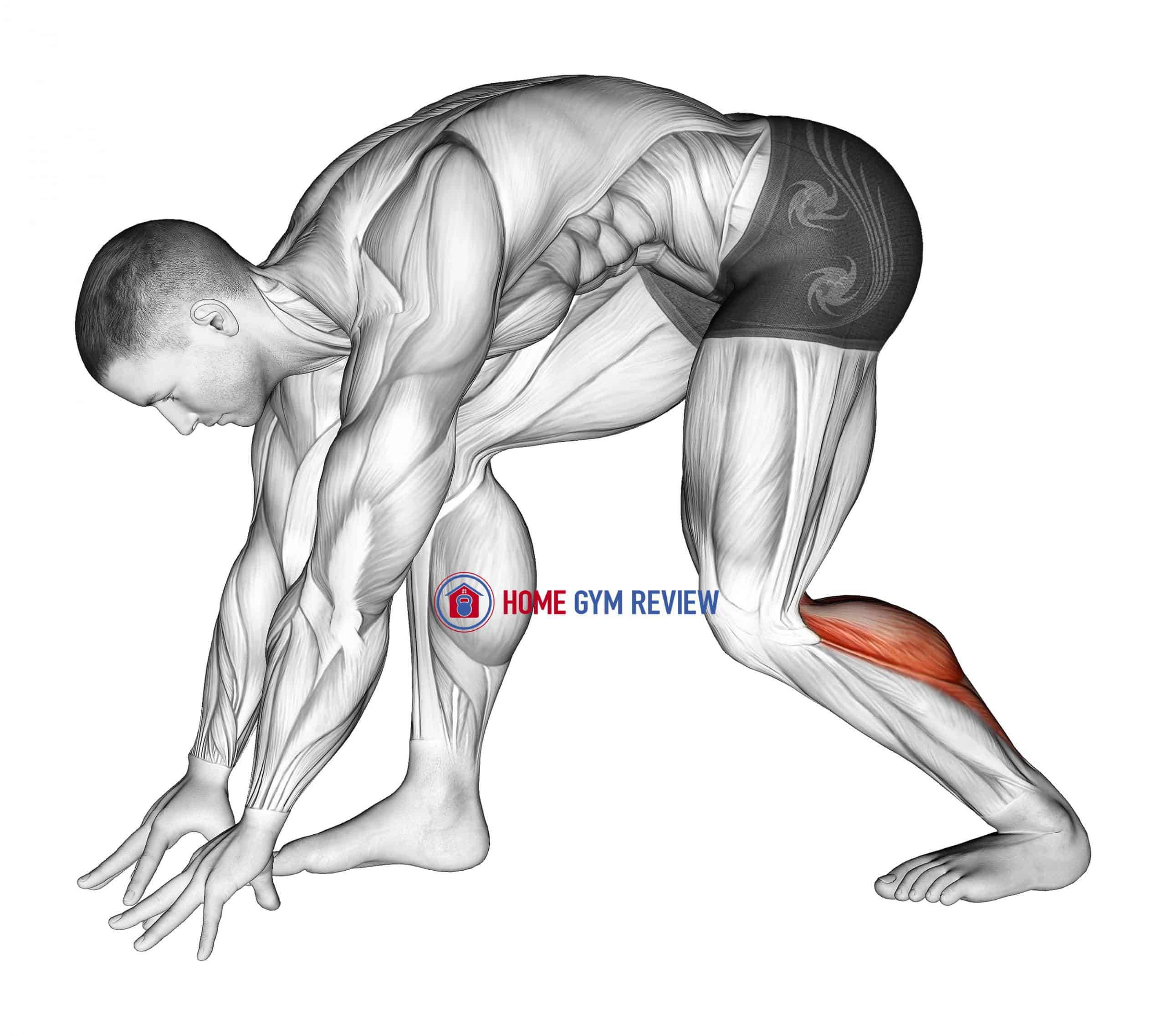 Crouching Heel Back Achilles Stretch
