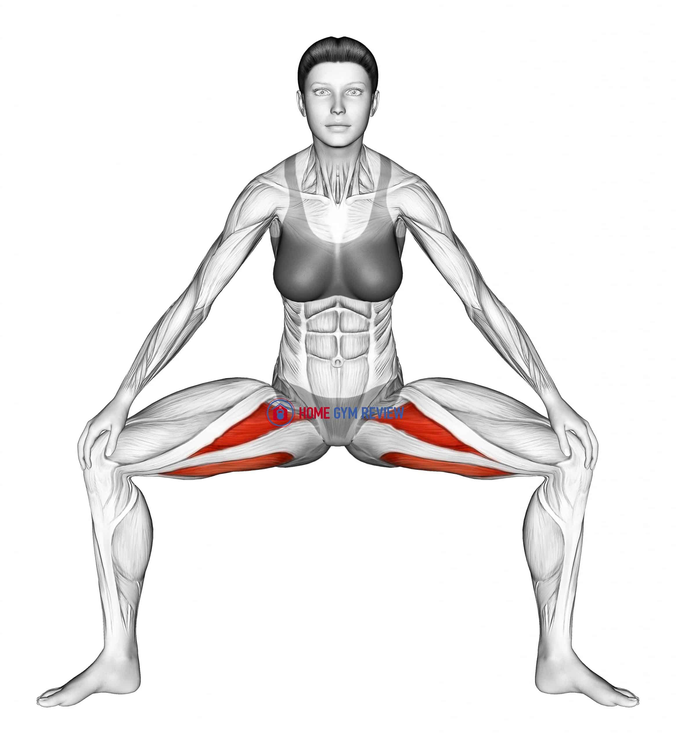 Standing Wide Knees Adductor Stretch