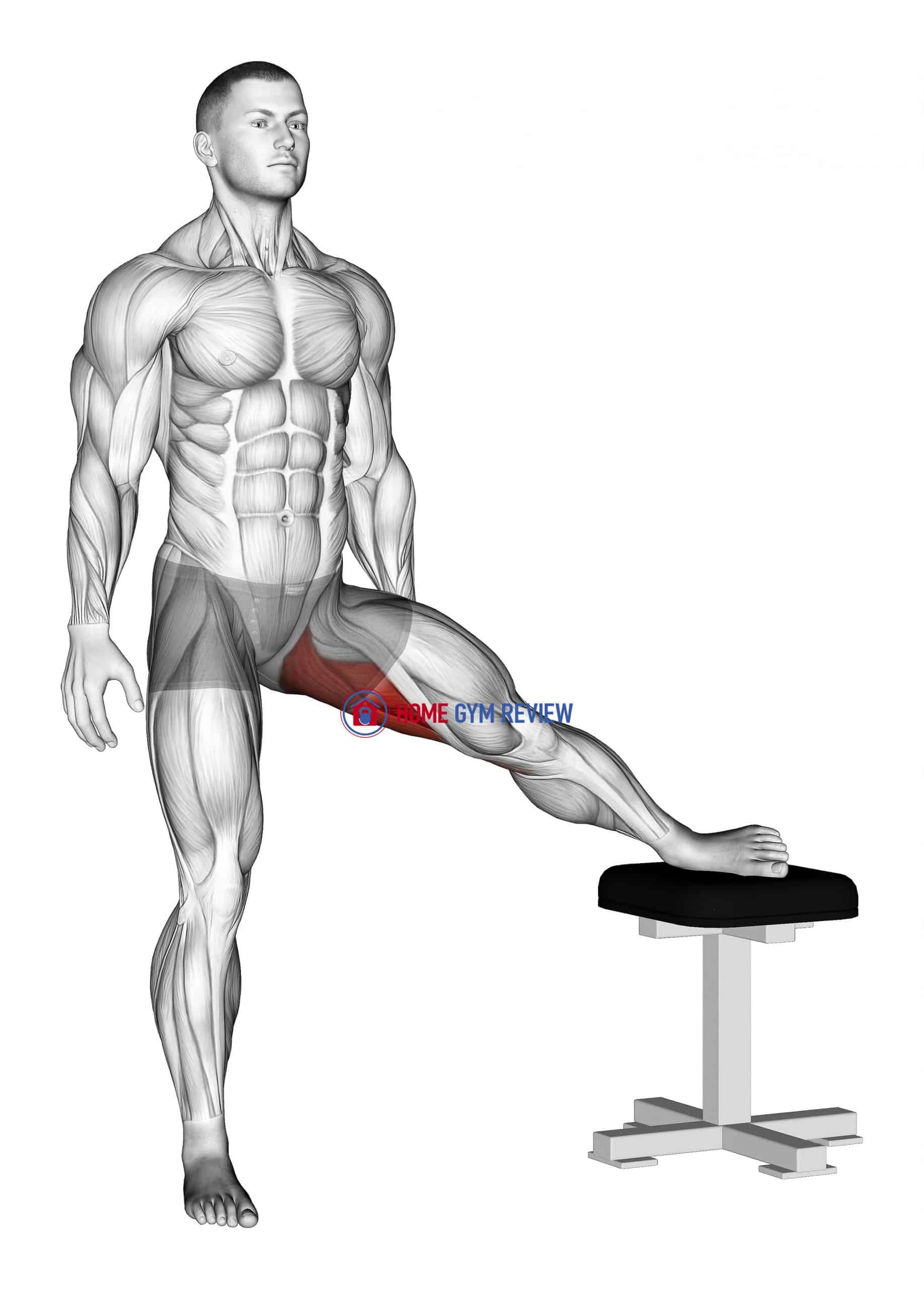 Standing Leg Up Adductor Stretch