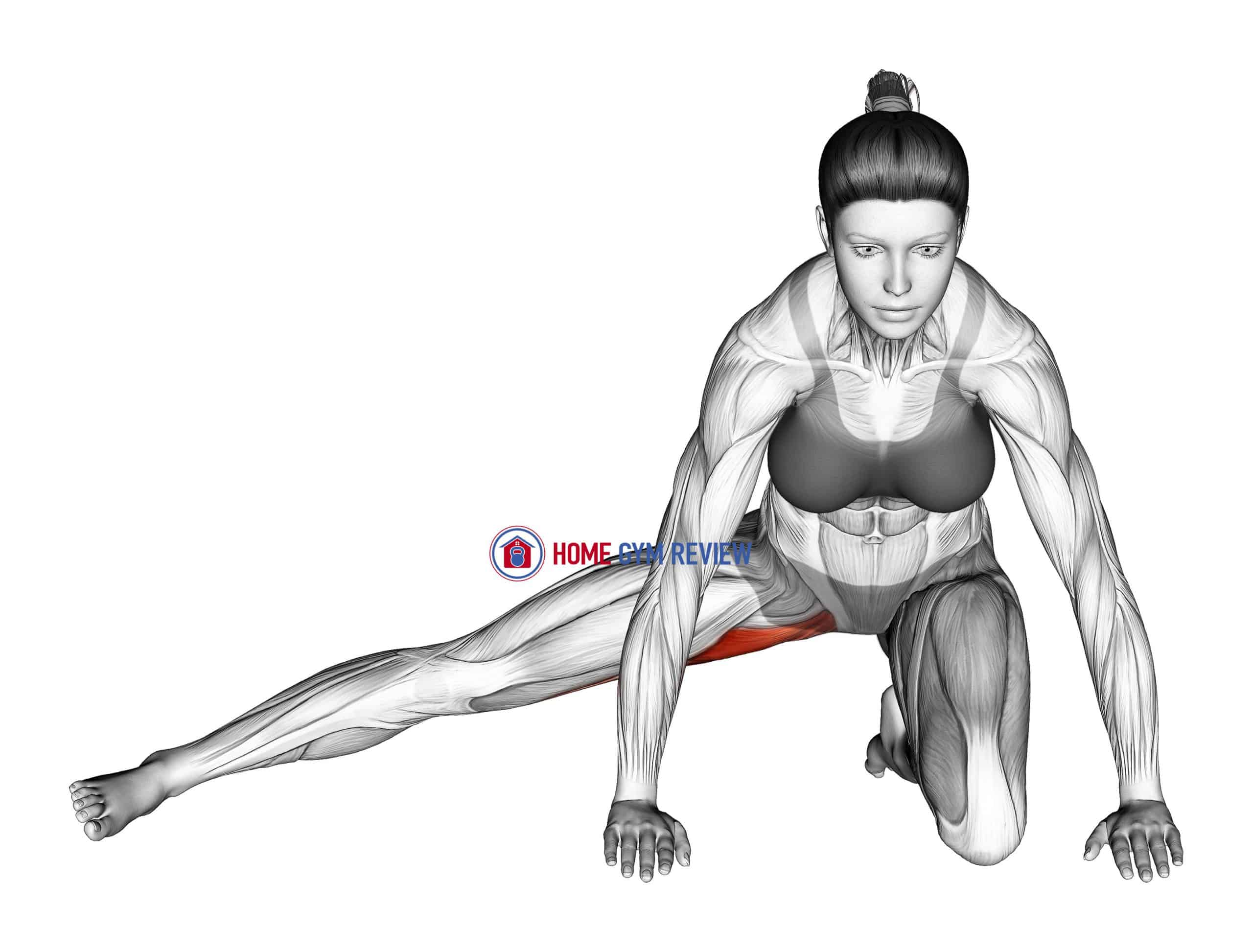 Kneeling Leg Out Adductor Stretch