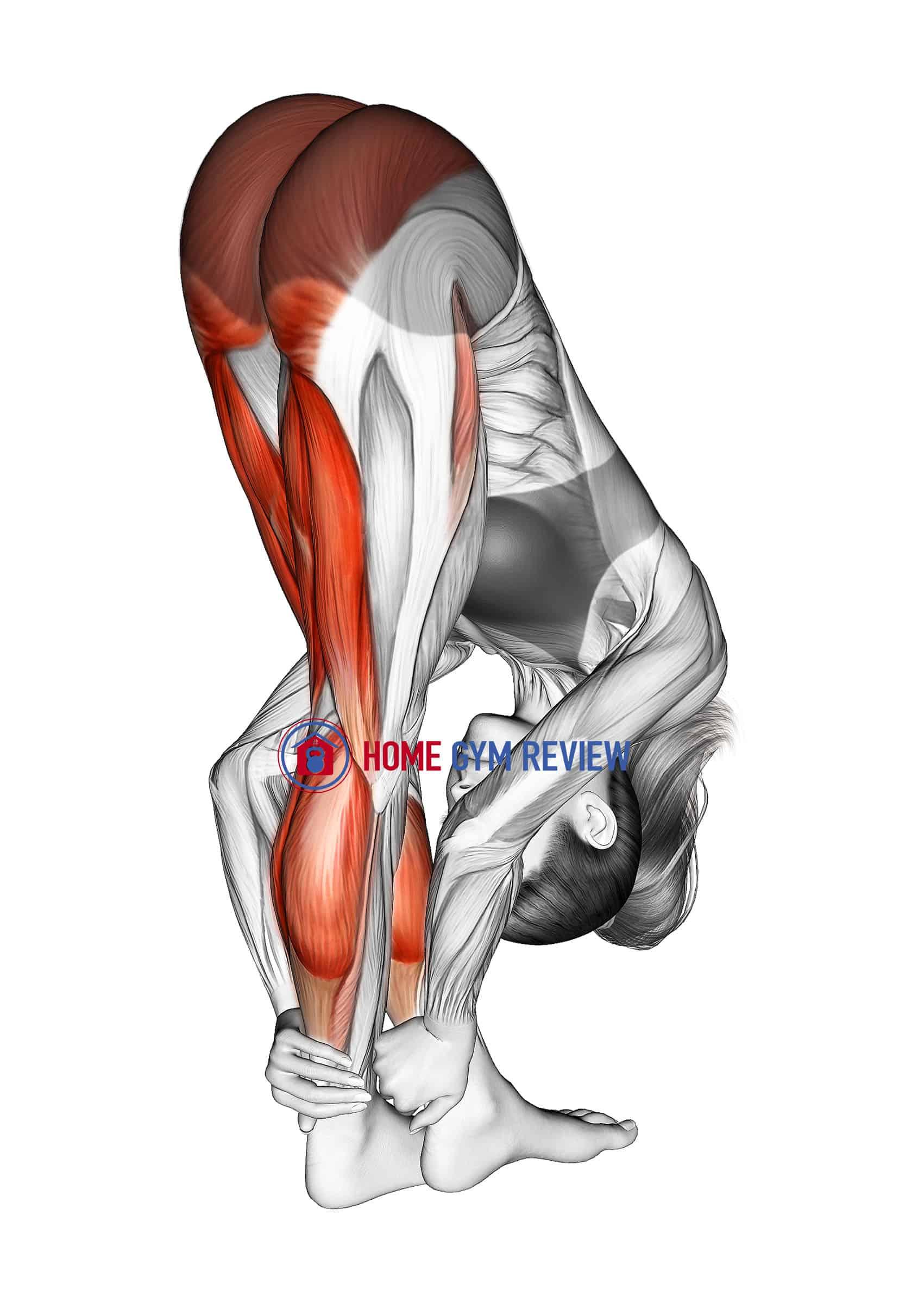 Standing Reach Down Hamstring Crossed Legs Stretch