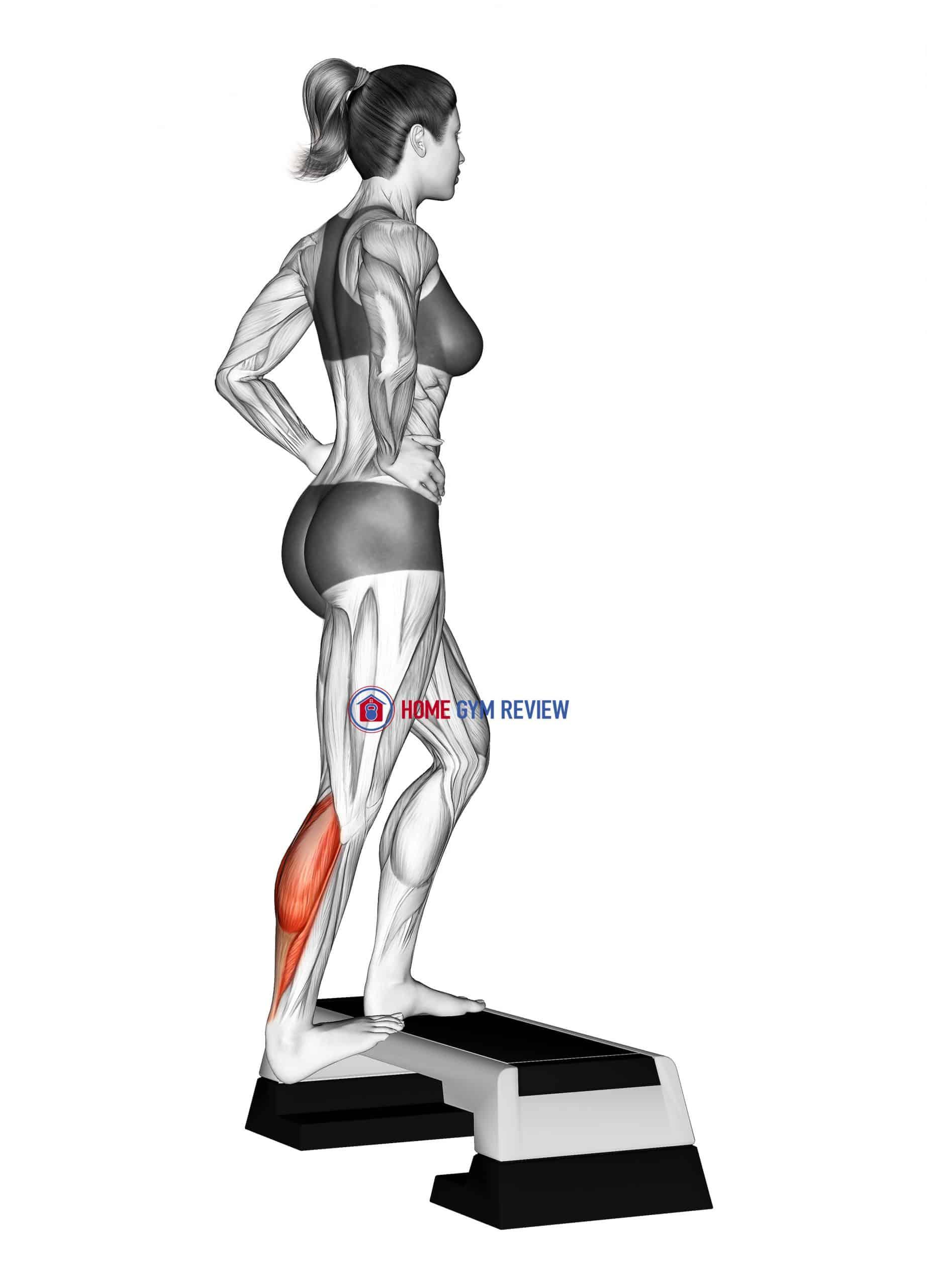 Single Heel Drop Calf Stretch