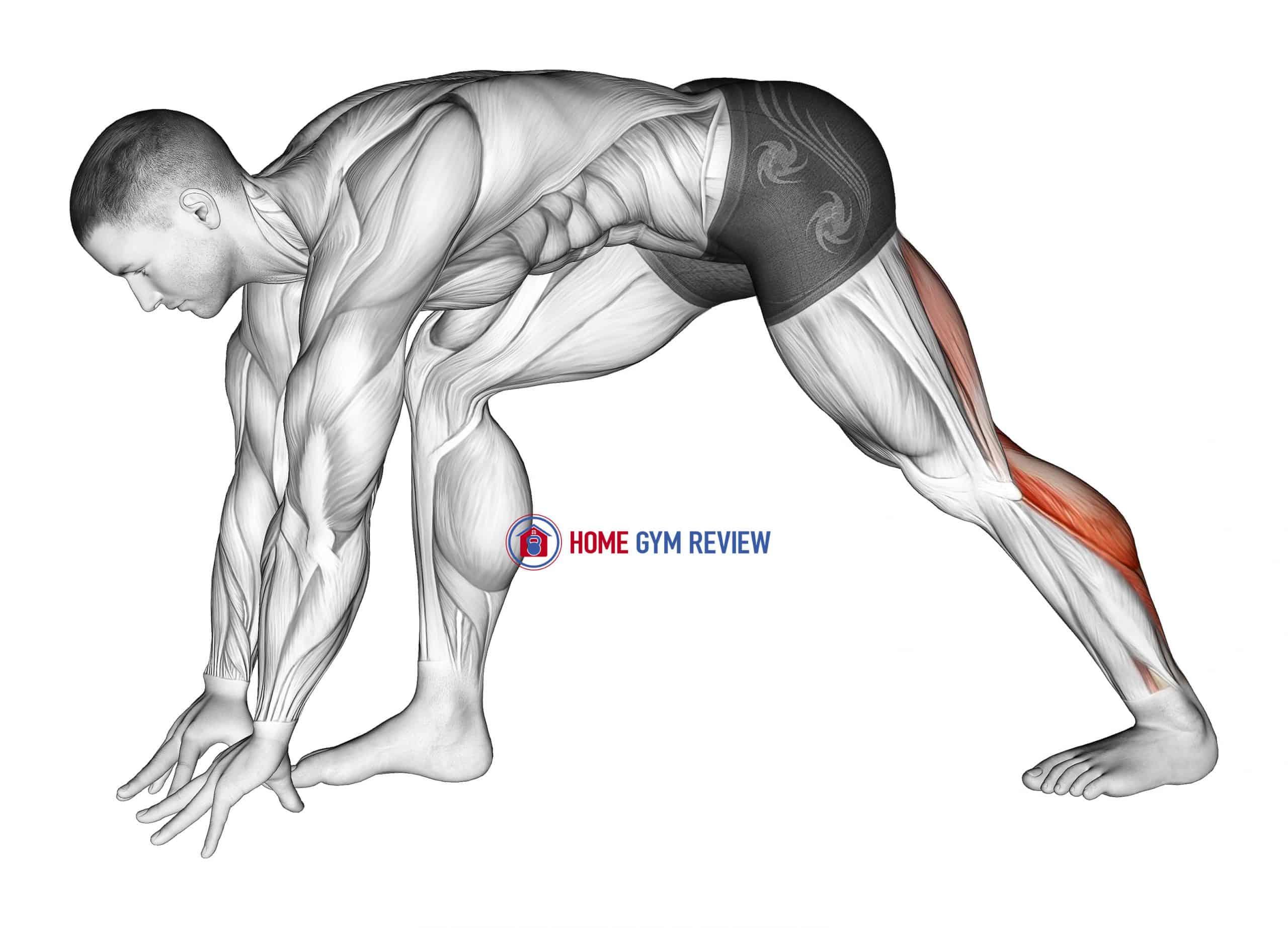 Crouching Heel Back Calf Stretch
