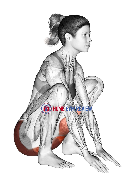 Hip And Knee Flexion Squatting Stretch