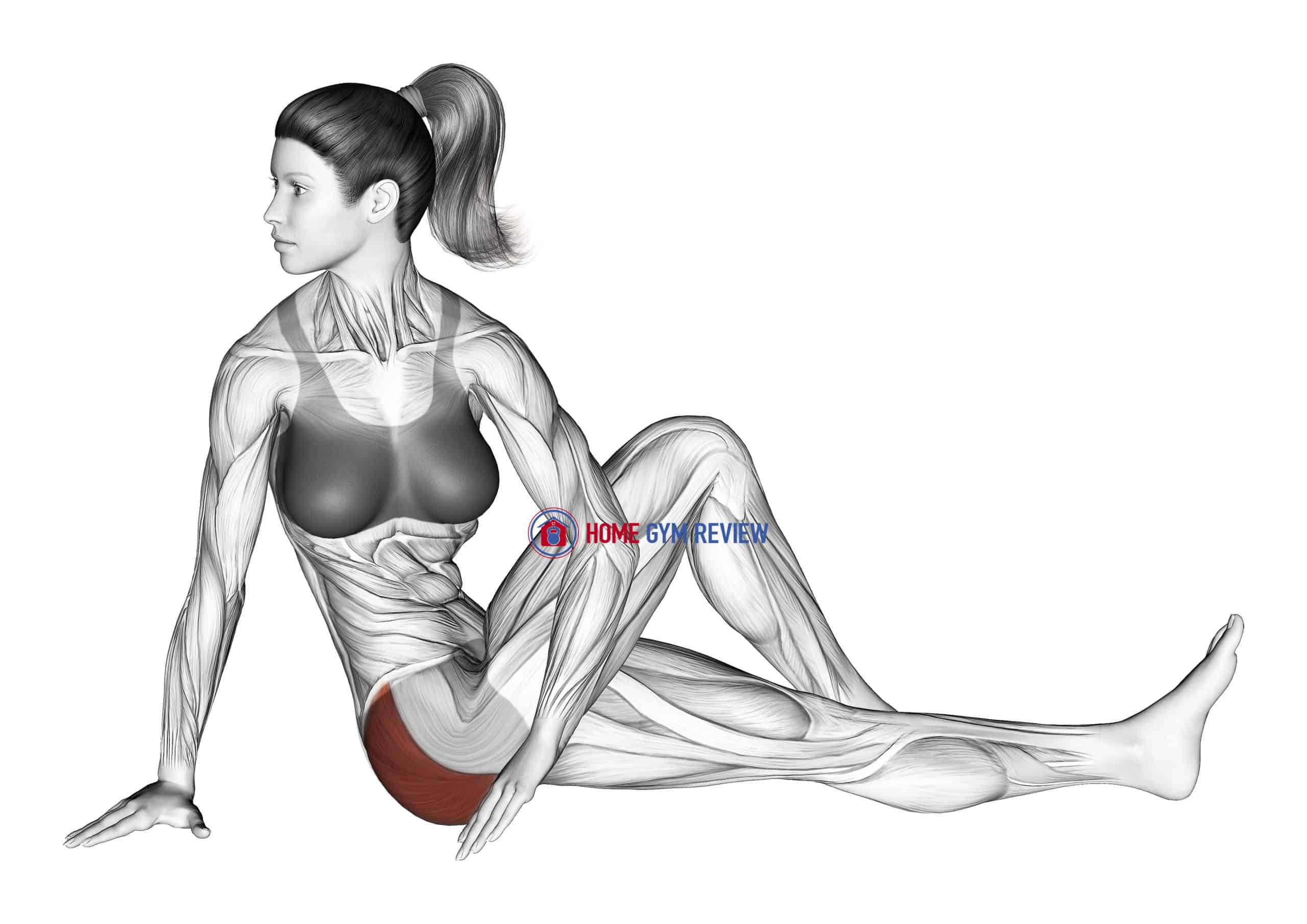 Seated Knee Up Rotation Stretch