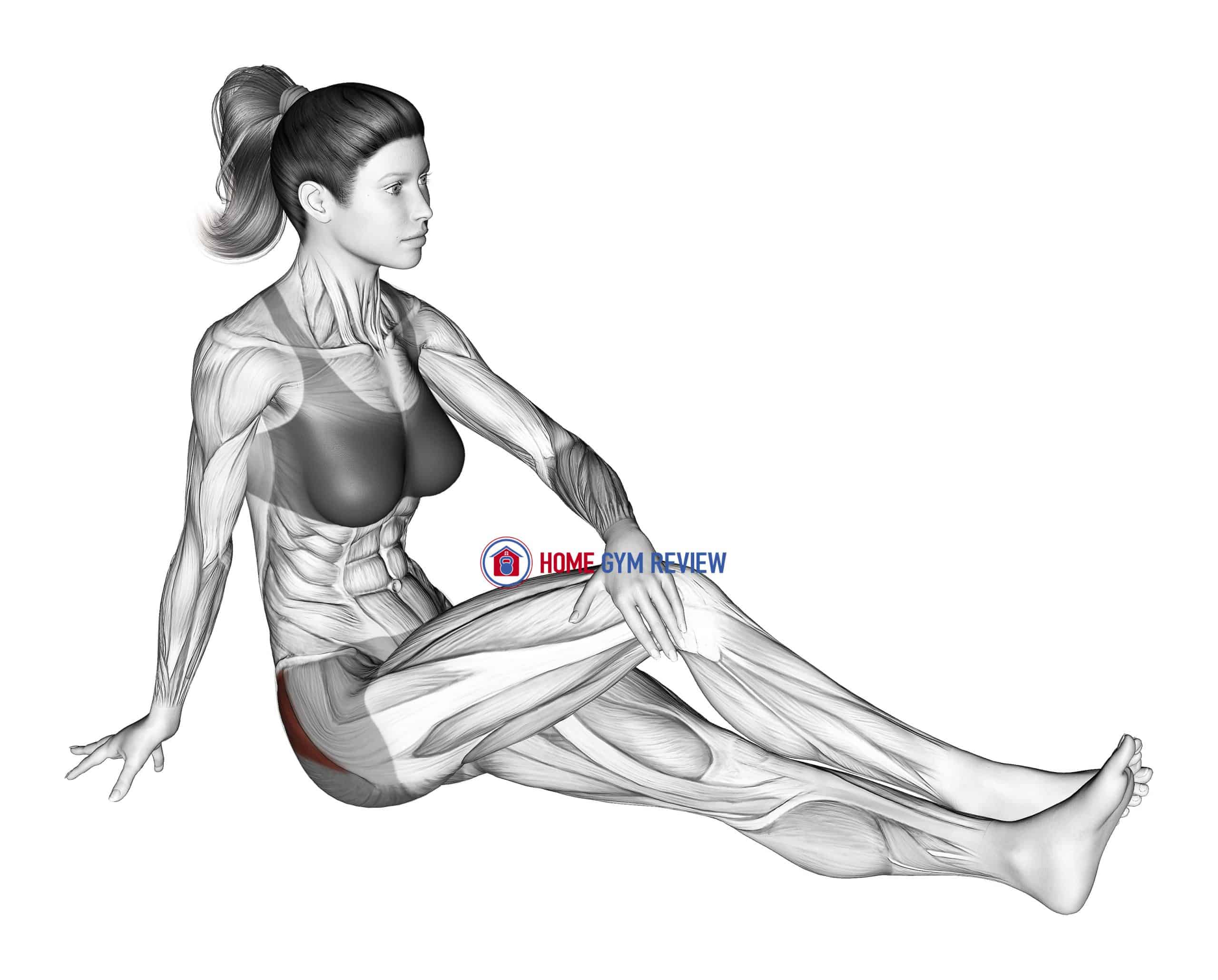 Seated Hip Stretch With Slightly Bent Leg