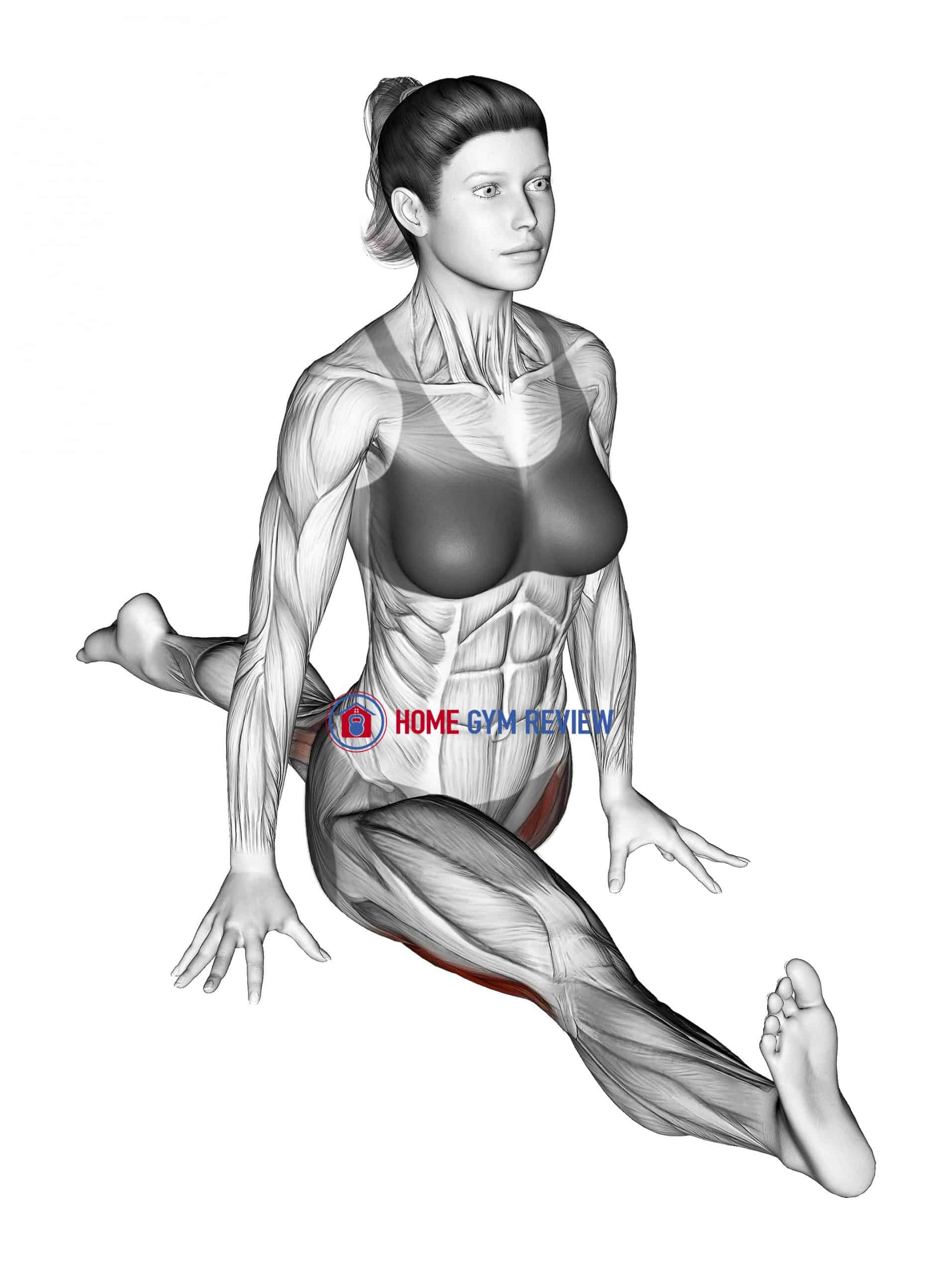 Flexion And Extension Hip Stretch