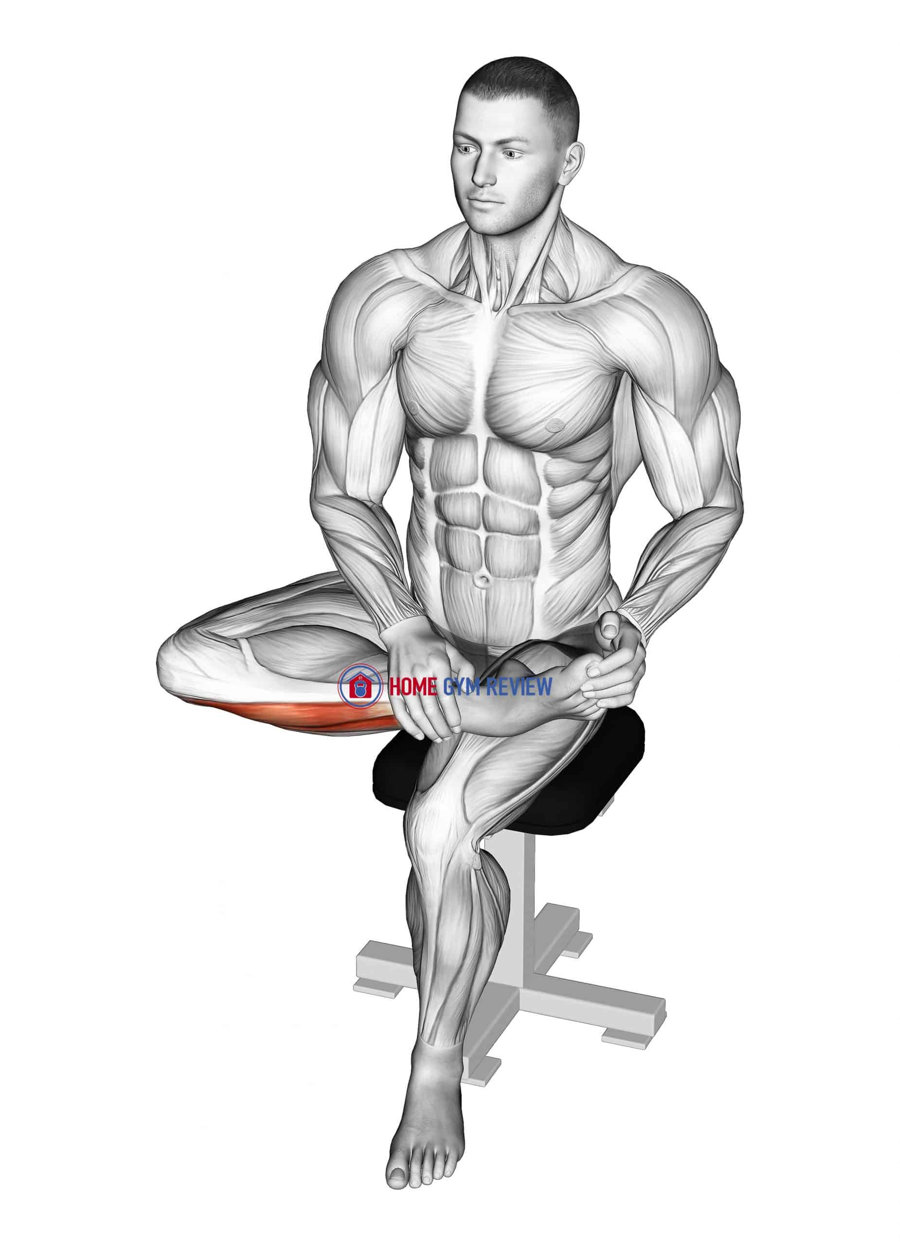 Seated Toe Extensor Stretch