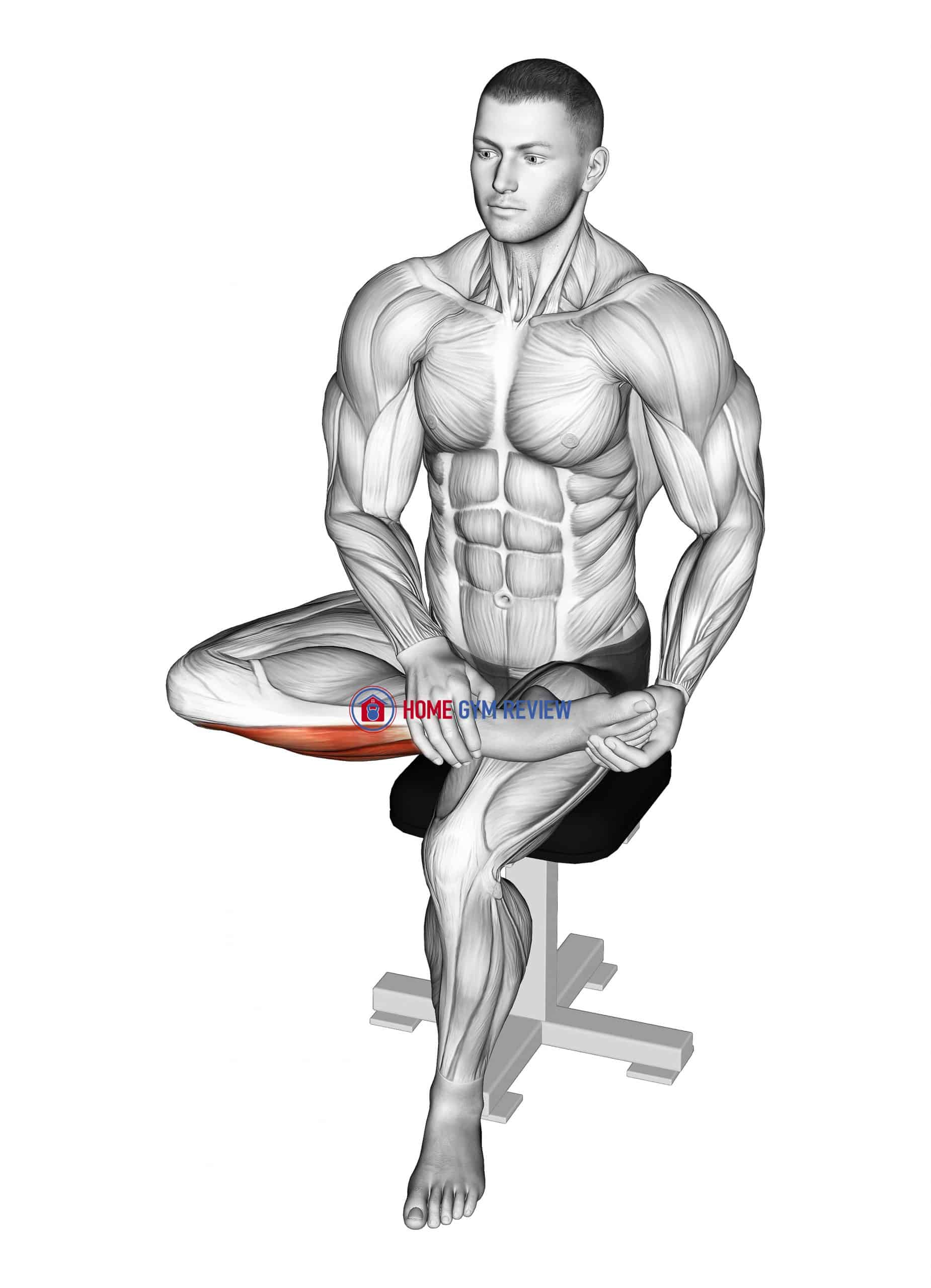 Seated Toe Extensor And Foot Everter Stretch