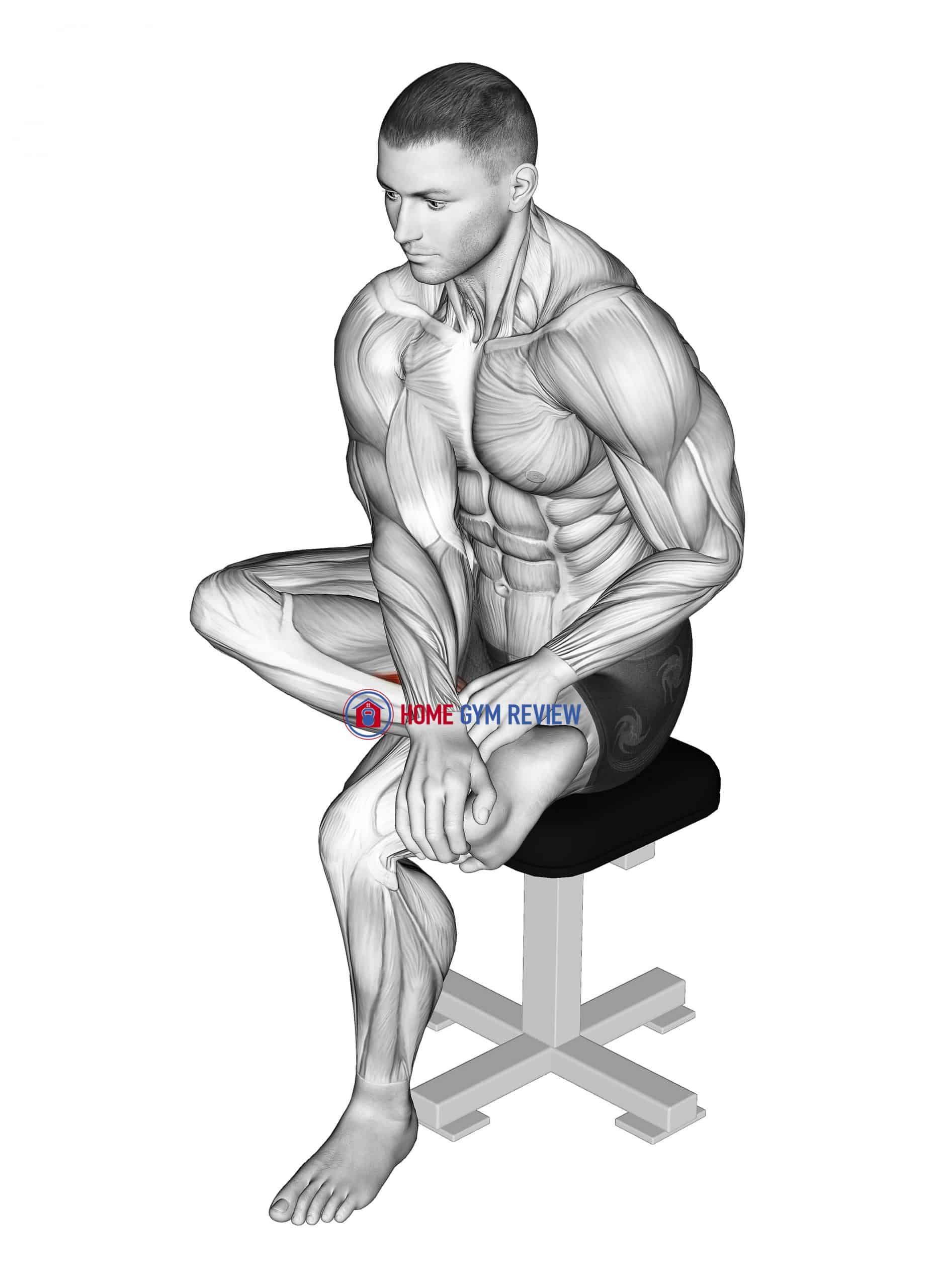 Seated Toe Flexor And Foot Inverter Stretch