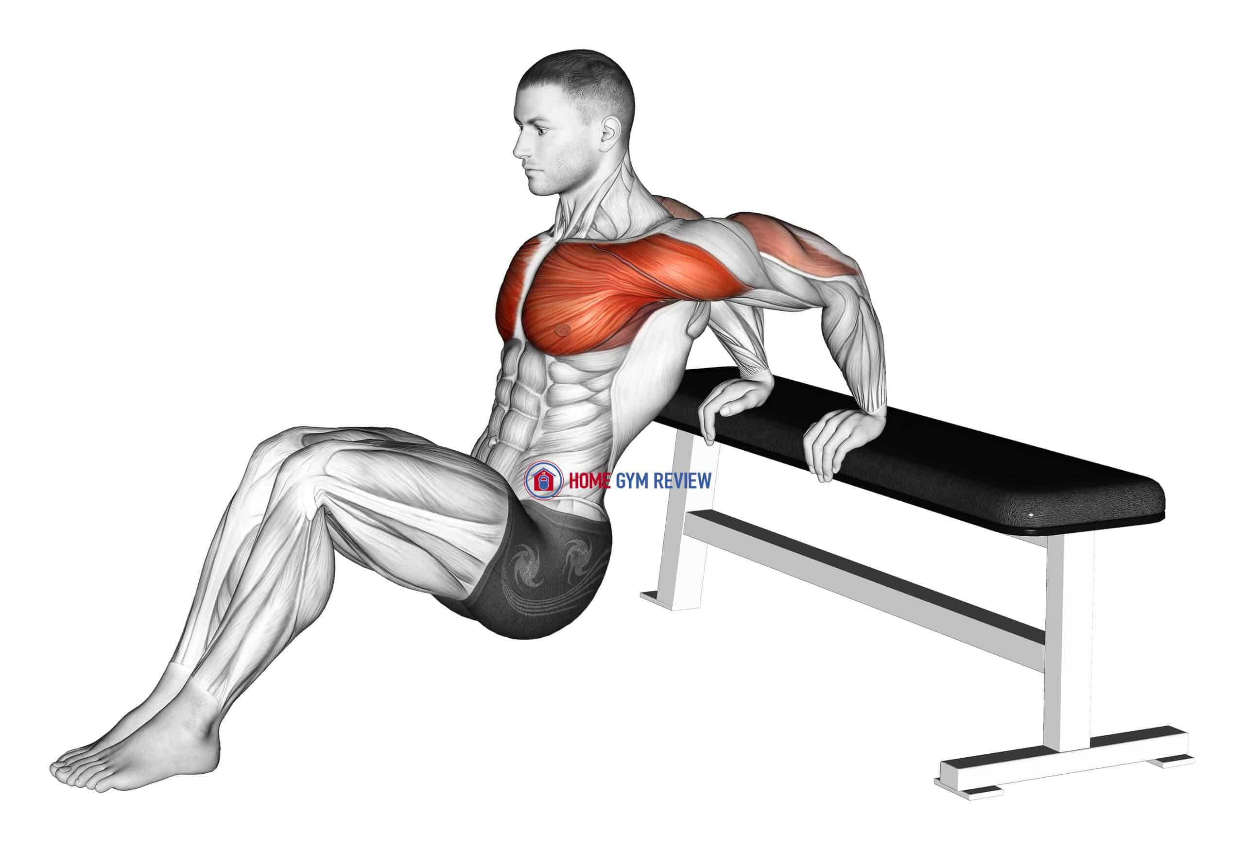 Sitting Shoulders Stretch On Bench