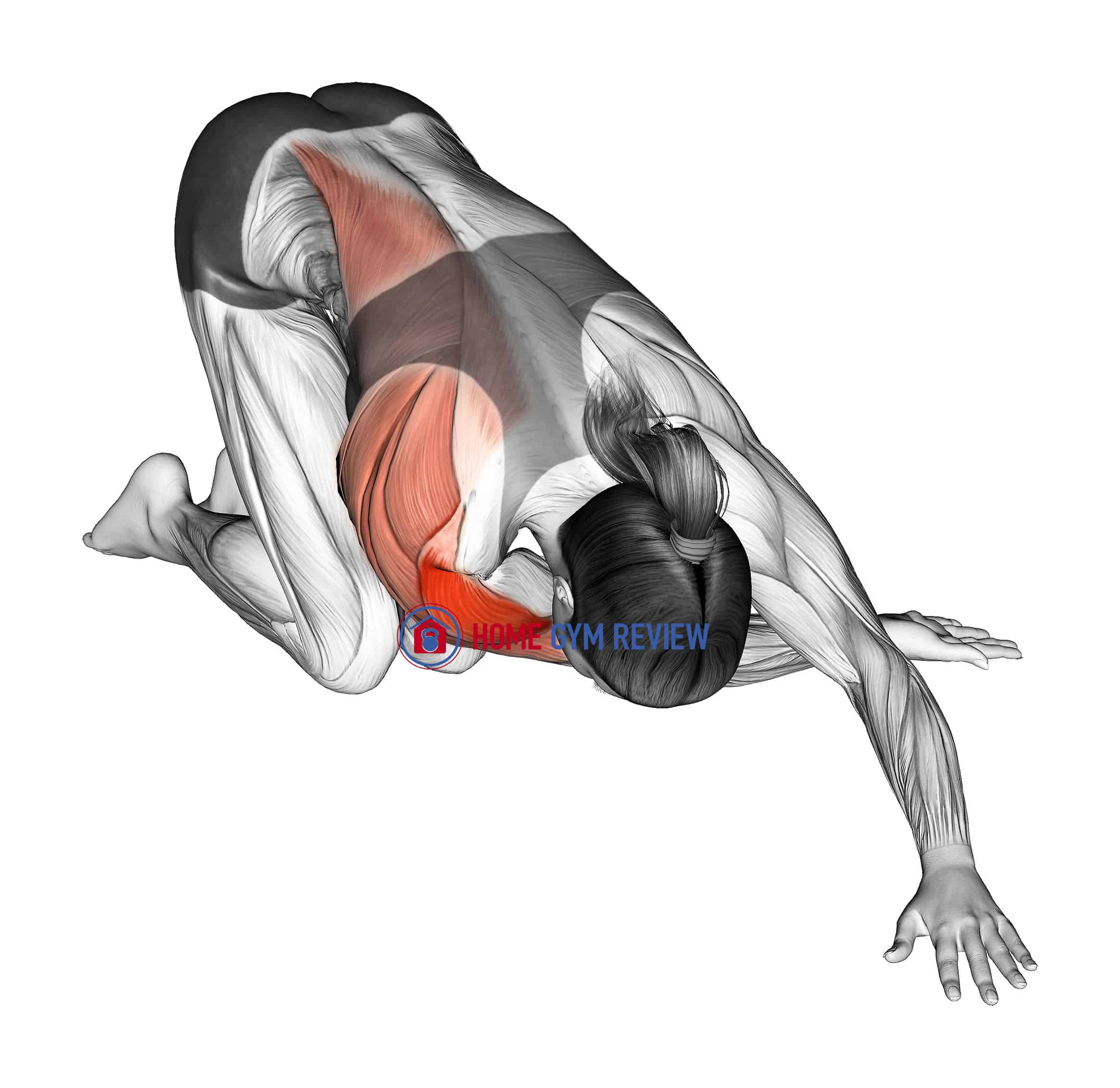 Kneeling One Arm Cross Body Stretch