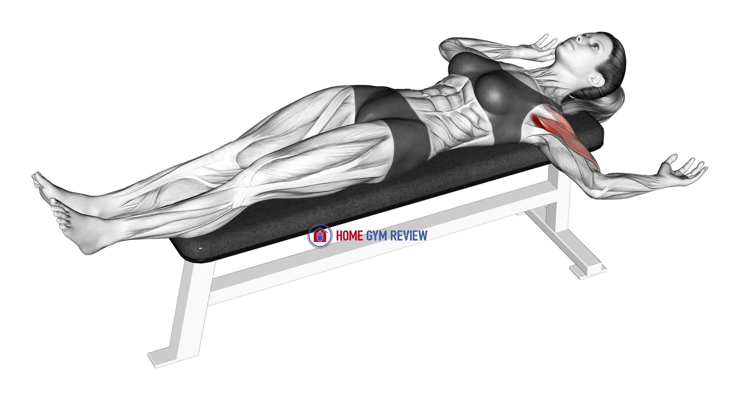 External Shoulder Rotation Stretch