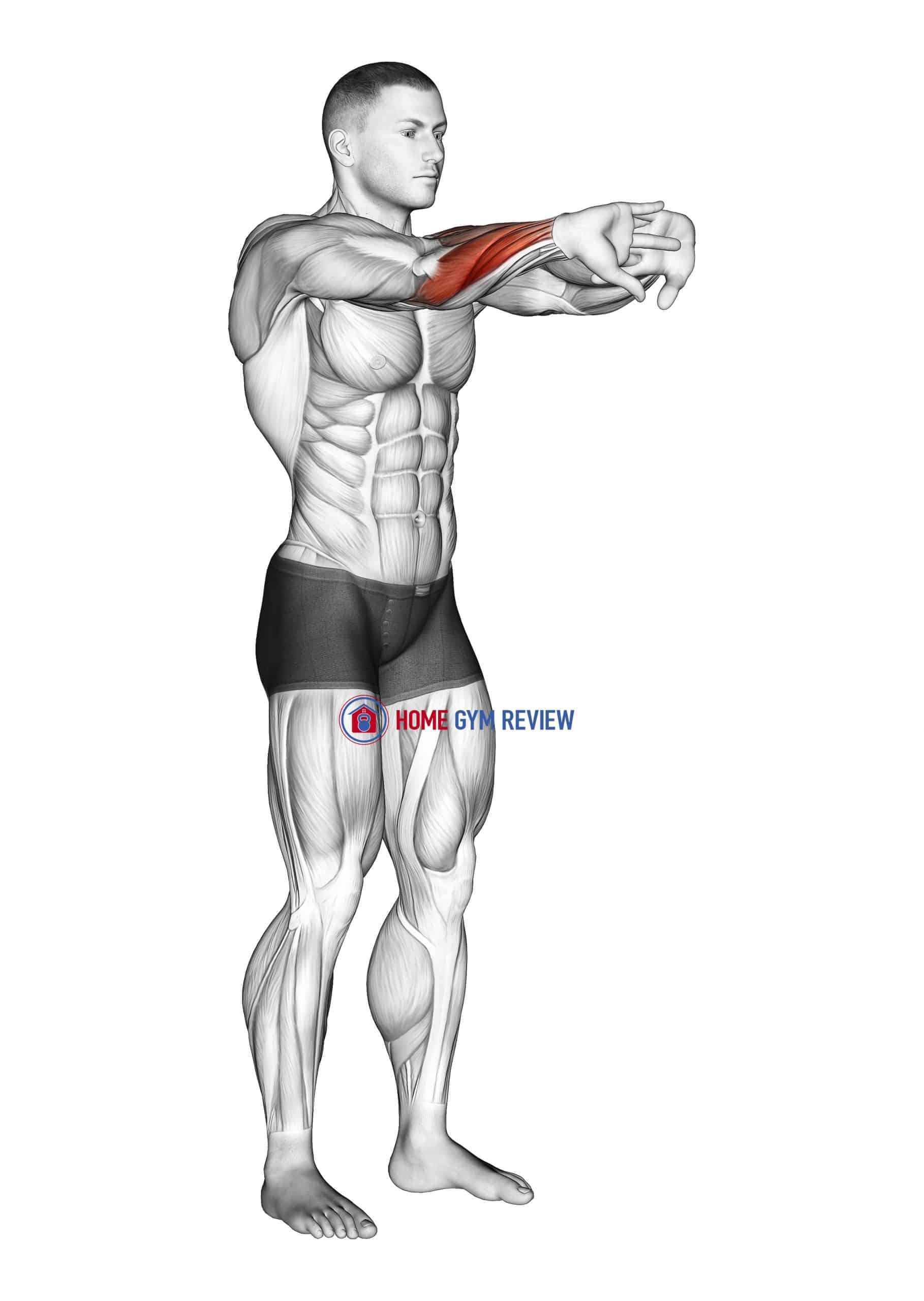 Palms Out Forearm Stretch