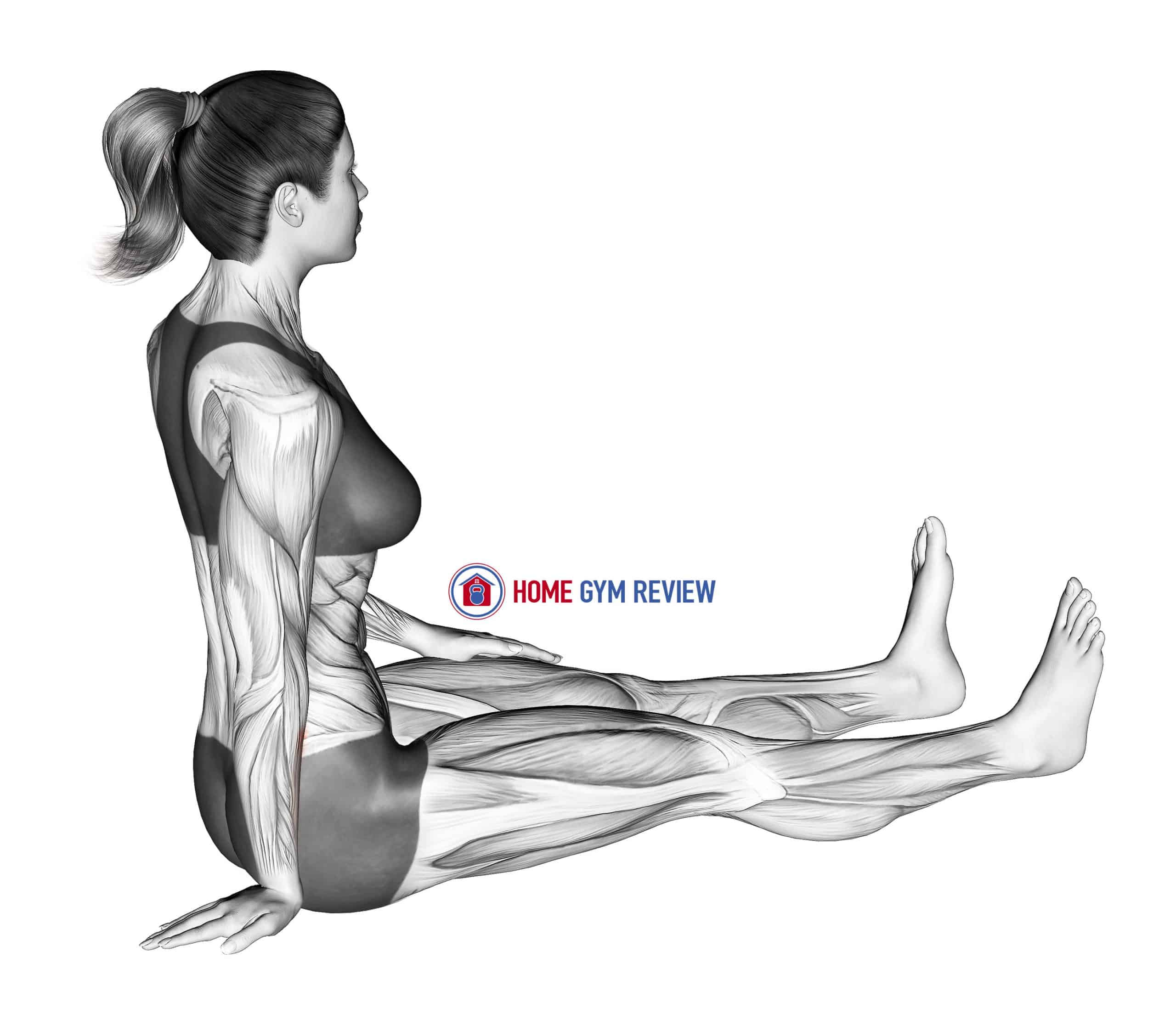 Seated Wrist Ulnar Deviator And Flexor Stretch