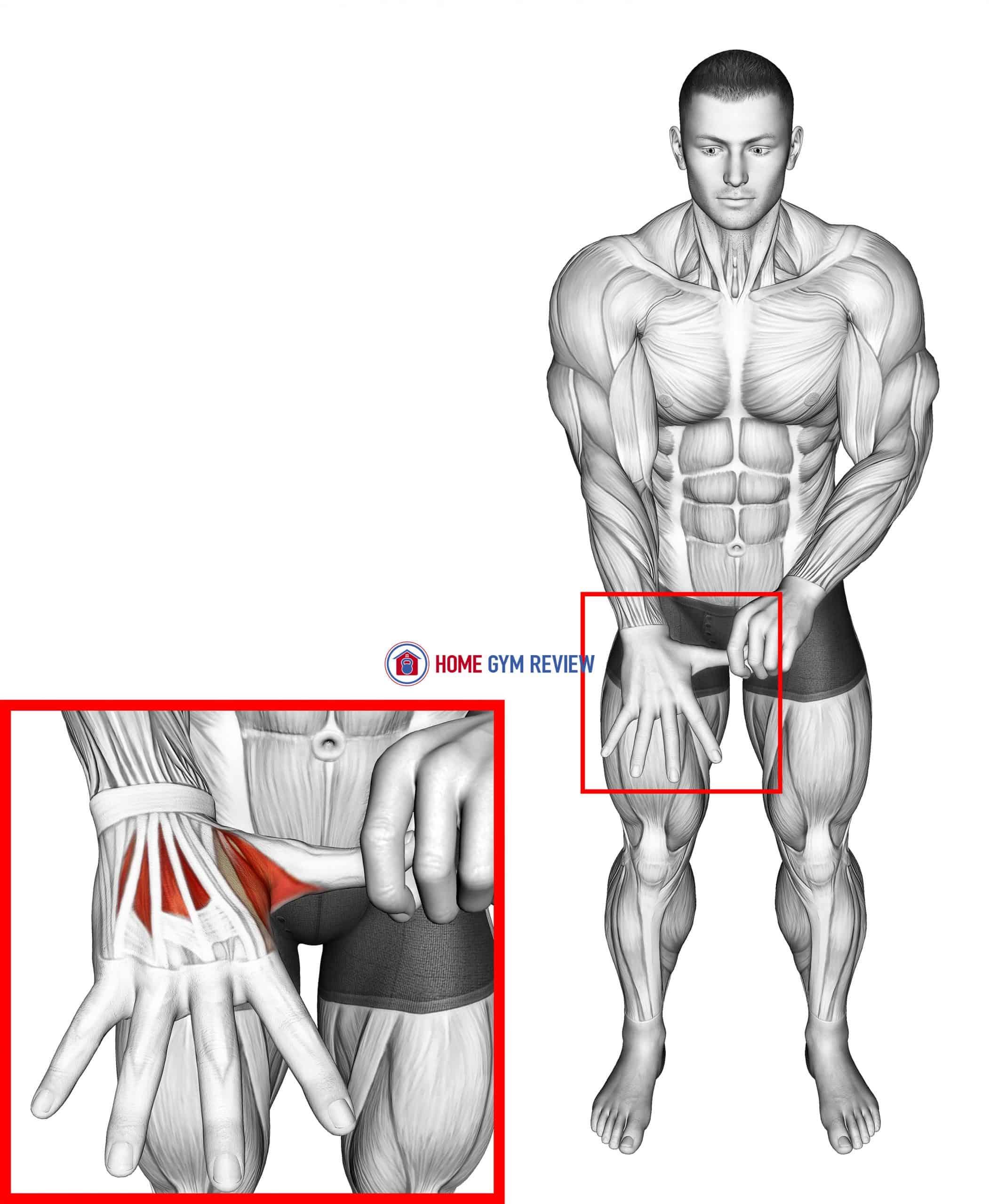 Separation Finger Stretch
