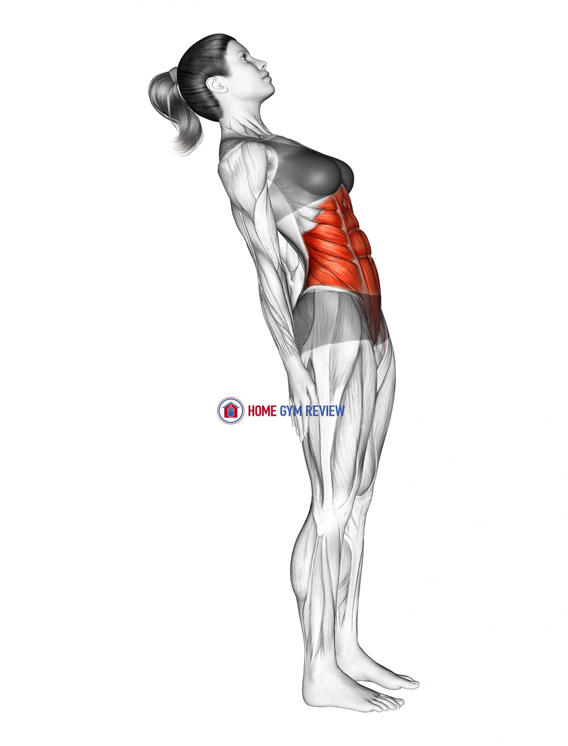 Standing Lean Back Stomach Stretch